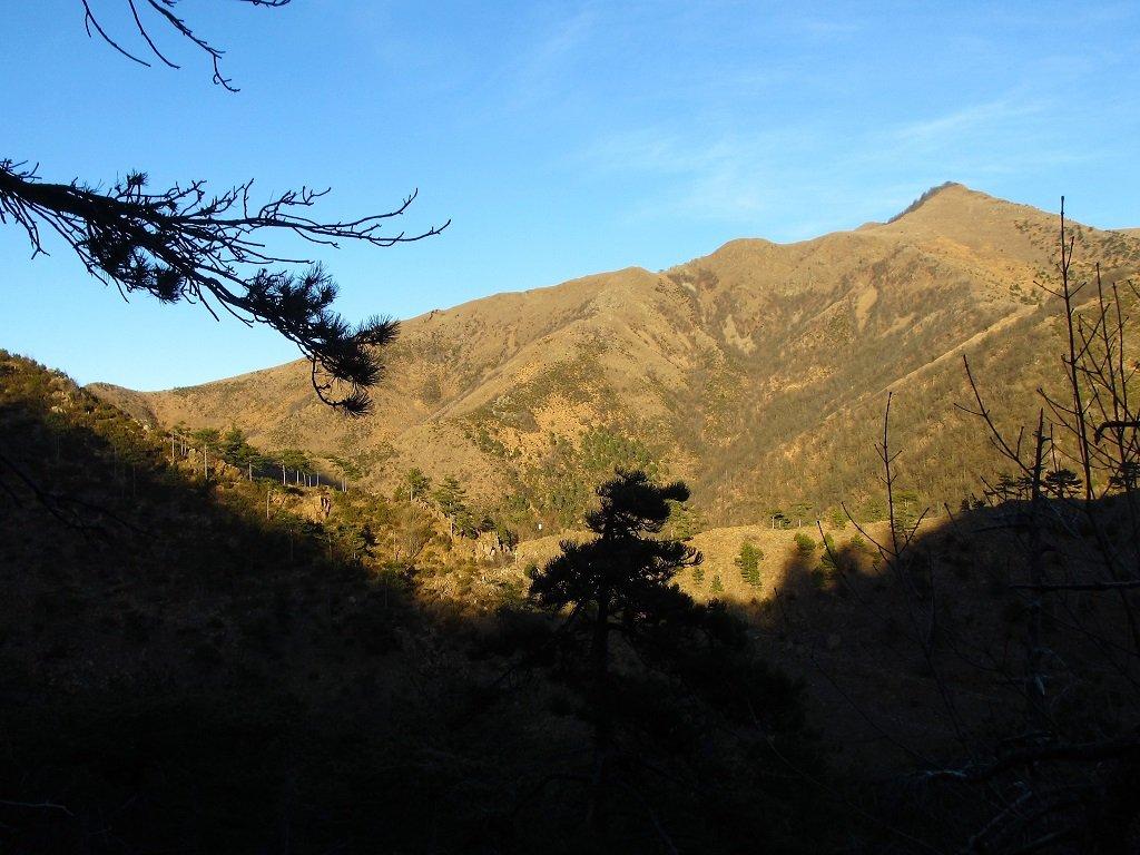 Figne (Monte delle) da Cappella dell'Assuntaper la dorsale S/O 2019-01-11