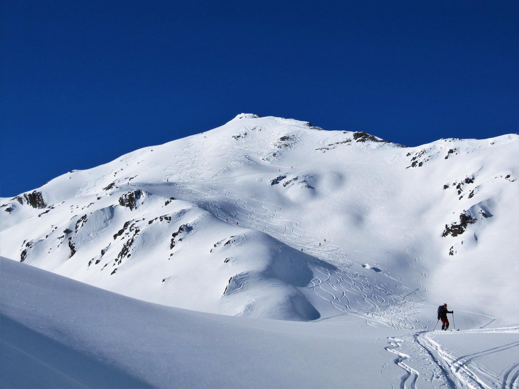 Belle curve su bella neve dalla cima