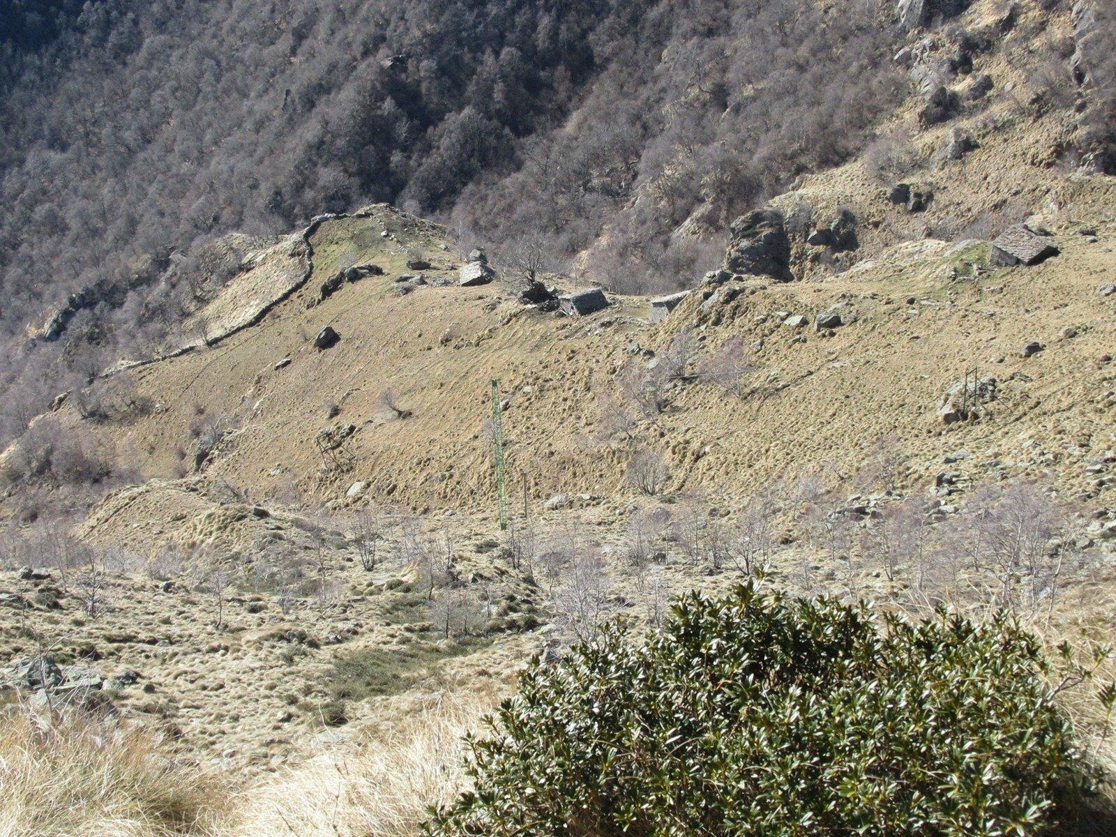 Lo scosceso pascolo delle Alpi Reje dall'alto della Trucca