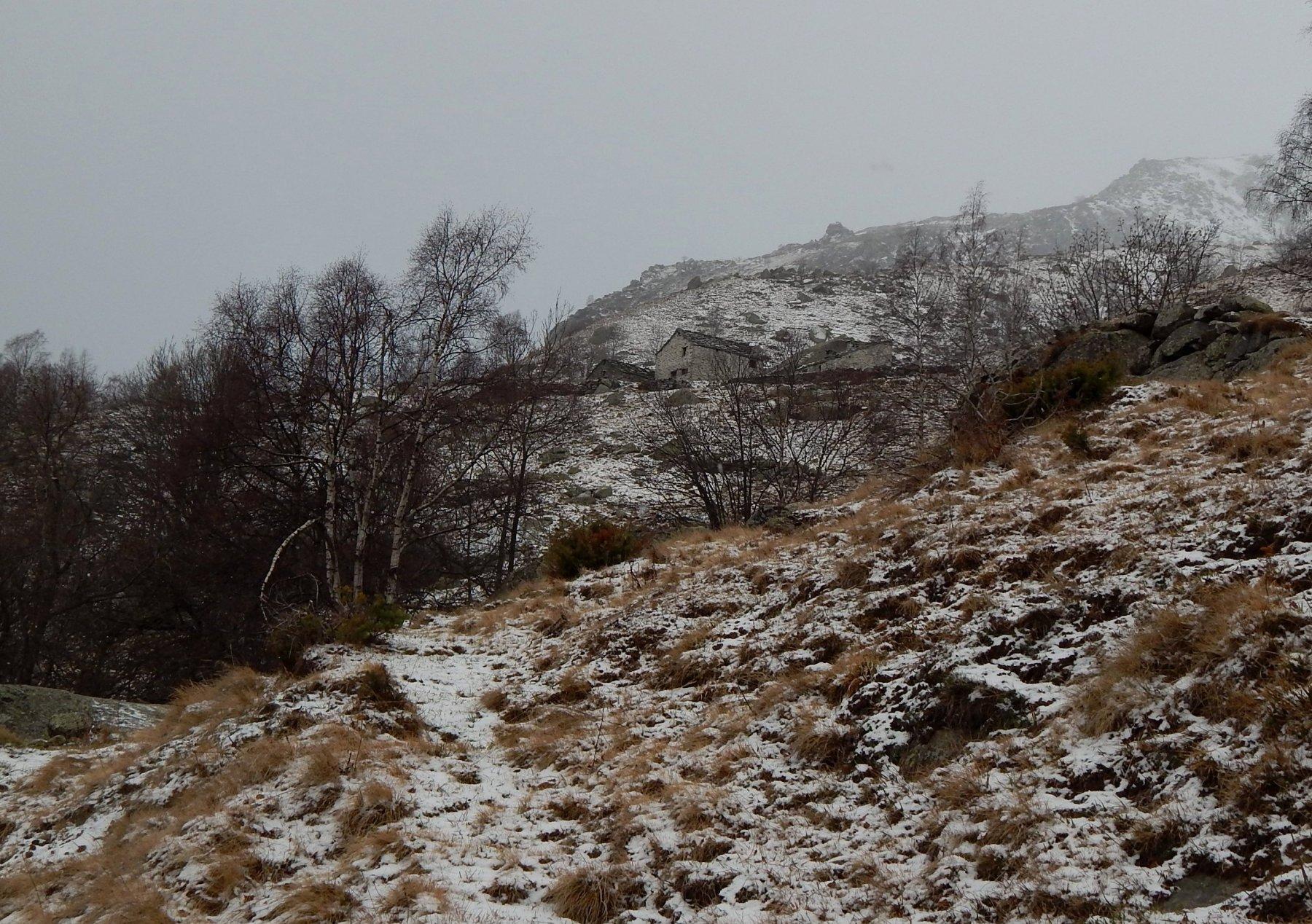 Ambiente decisamente invernale