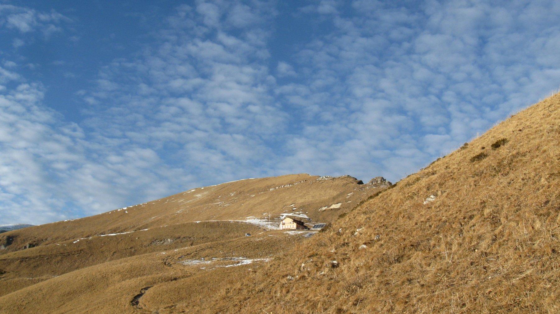 Pavione (Monte) dal Passo Croce d'Aune 2019-01-16