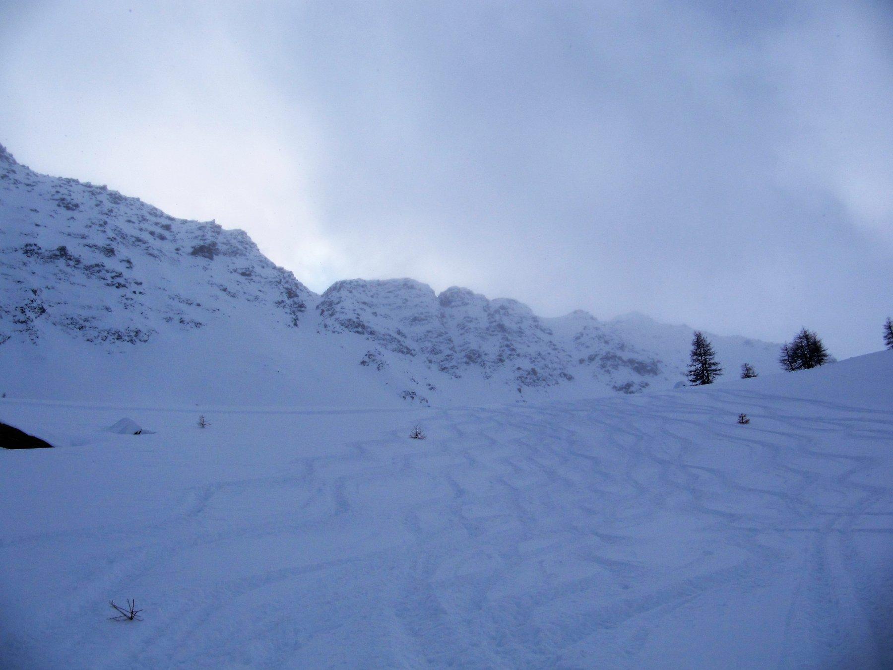 Neve goduriosa
