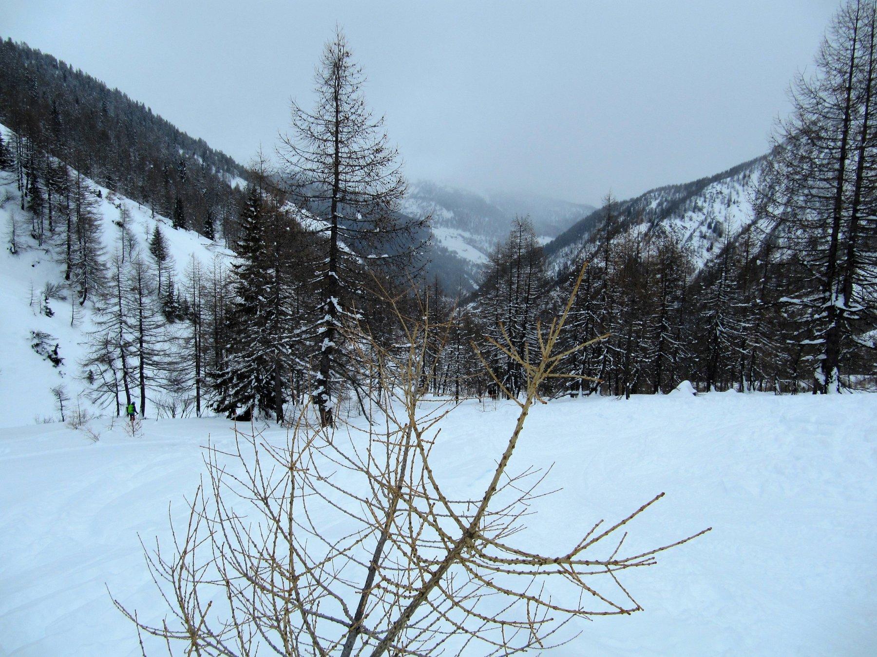 Neve e visibilità migliore in basso
