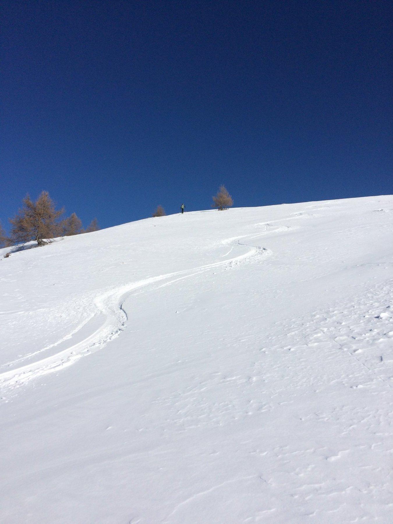 Un bel tratto sotto l'Olino ma....occhio alle pietre a fil di neve