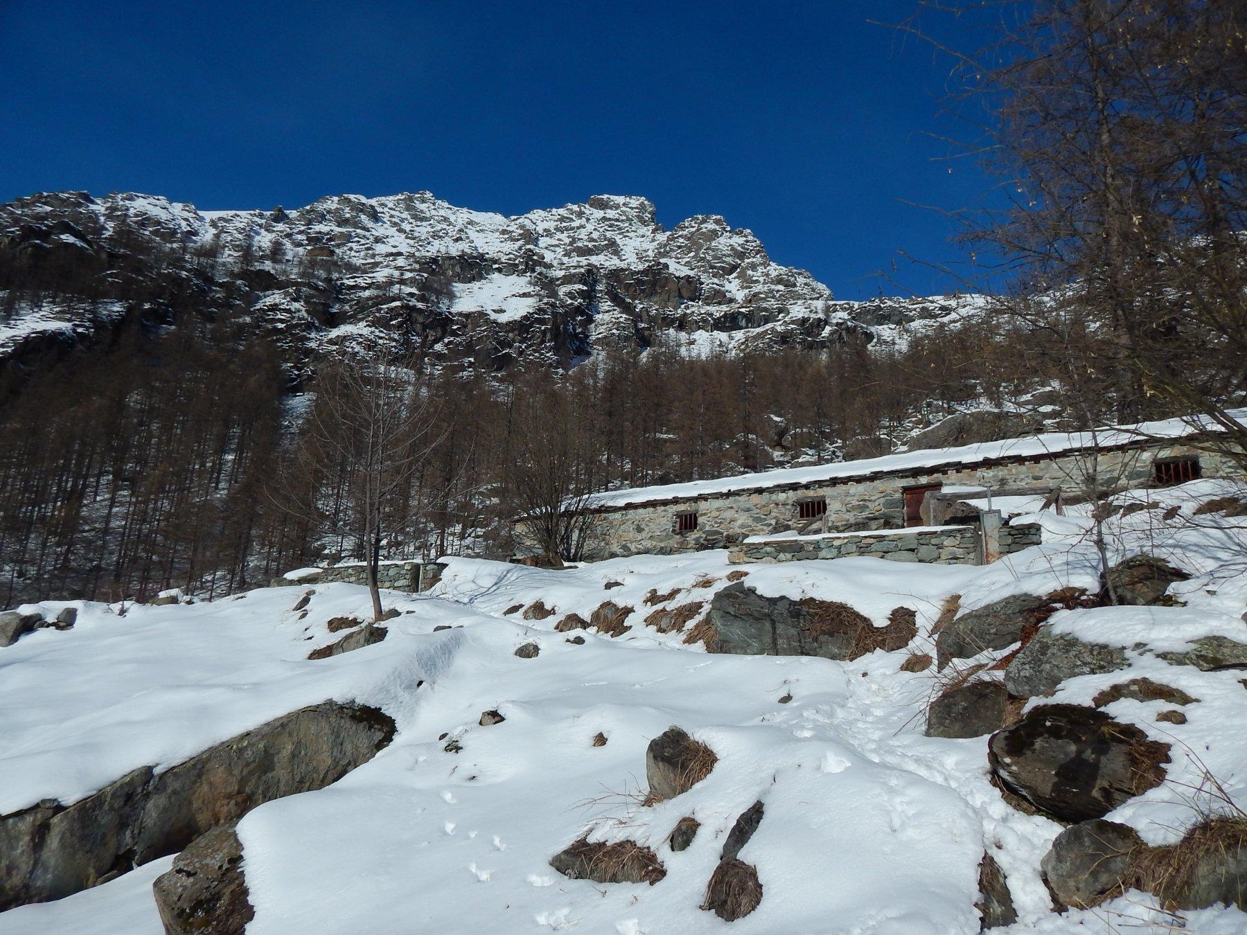 Alpeggi Pian Bosco