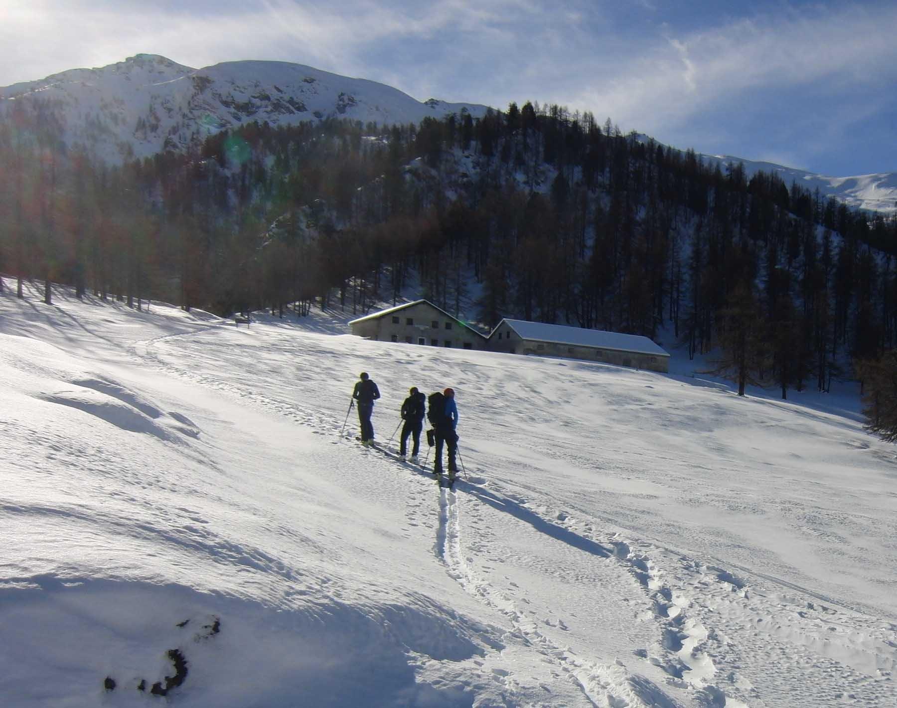 Alpe Argueil