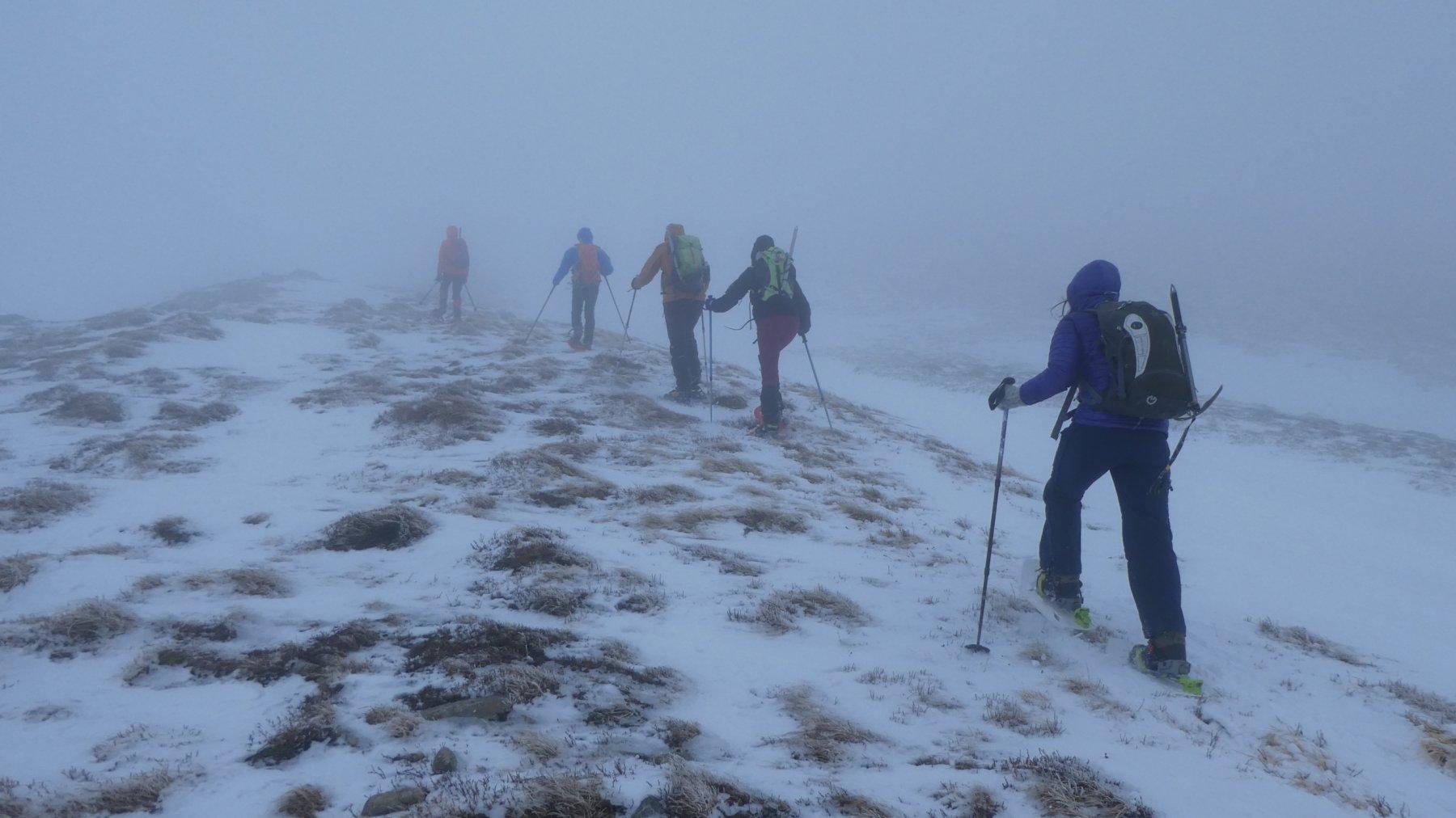 salendo il tratto iniziale del crinale Ovest verso il Monte Sillano