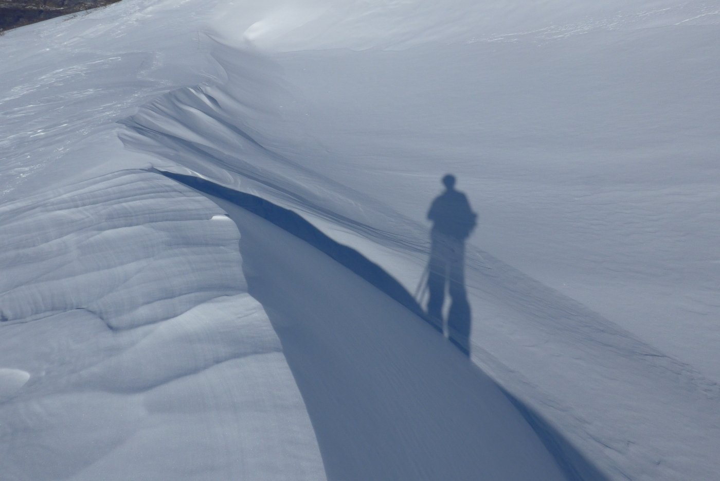 Ombra sulla neve