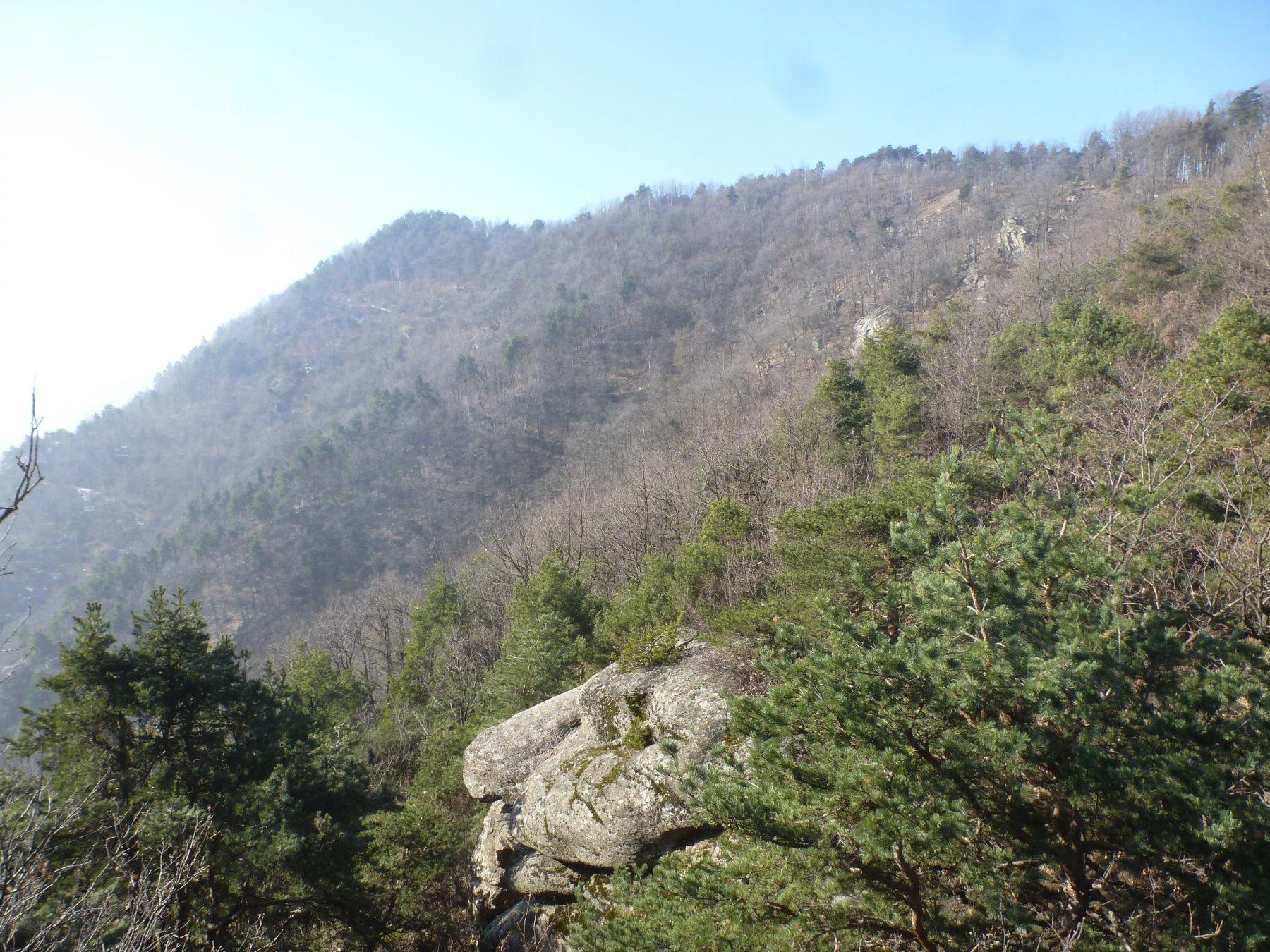 verso il monte muretto