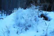 Gelo!!   I   Un froid immense!   I   Cold!!   I   Eisig!!   I   Hielo!!