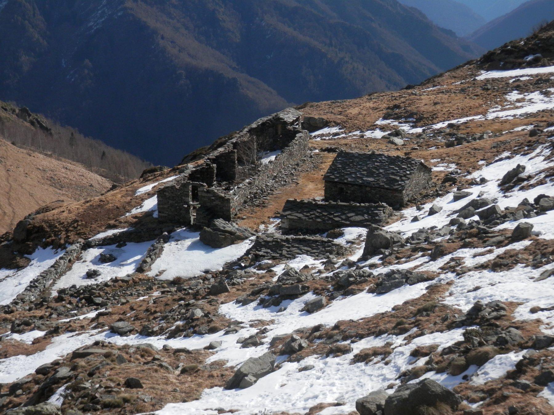 alpe Arzola