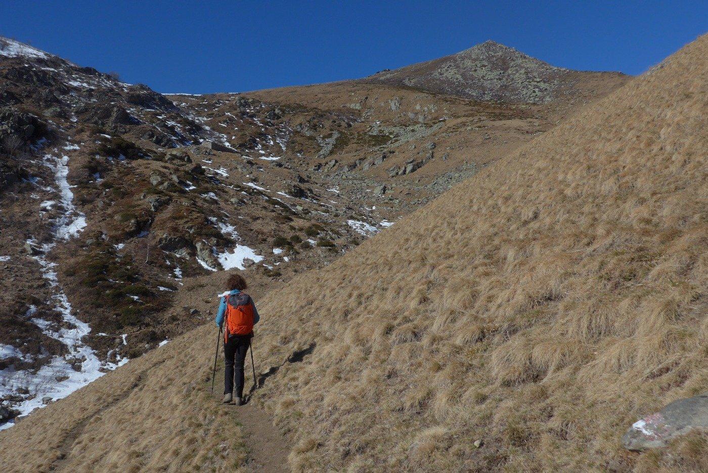 Quasi all'Alpe Arzola