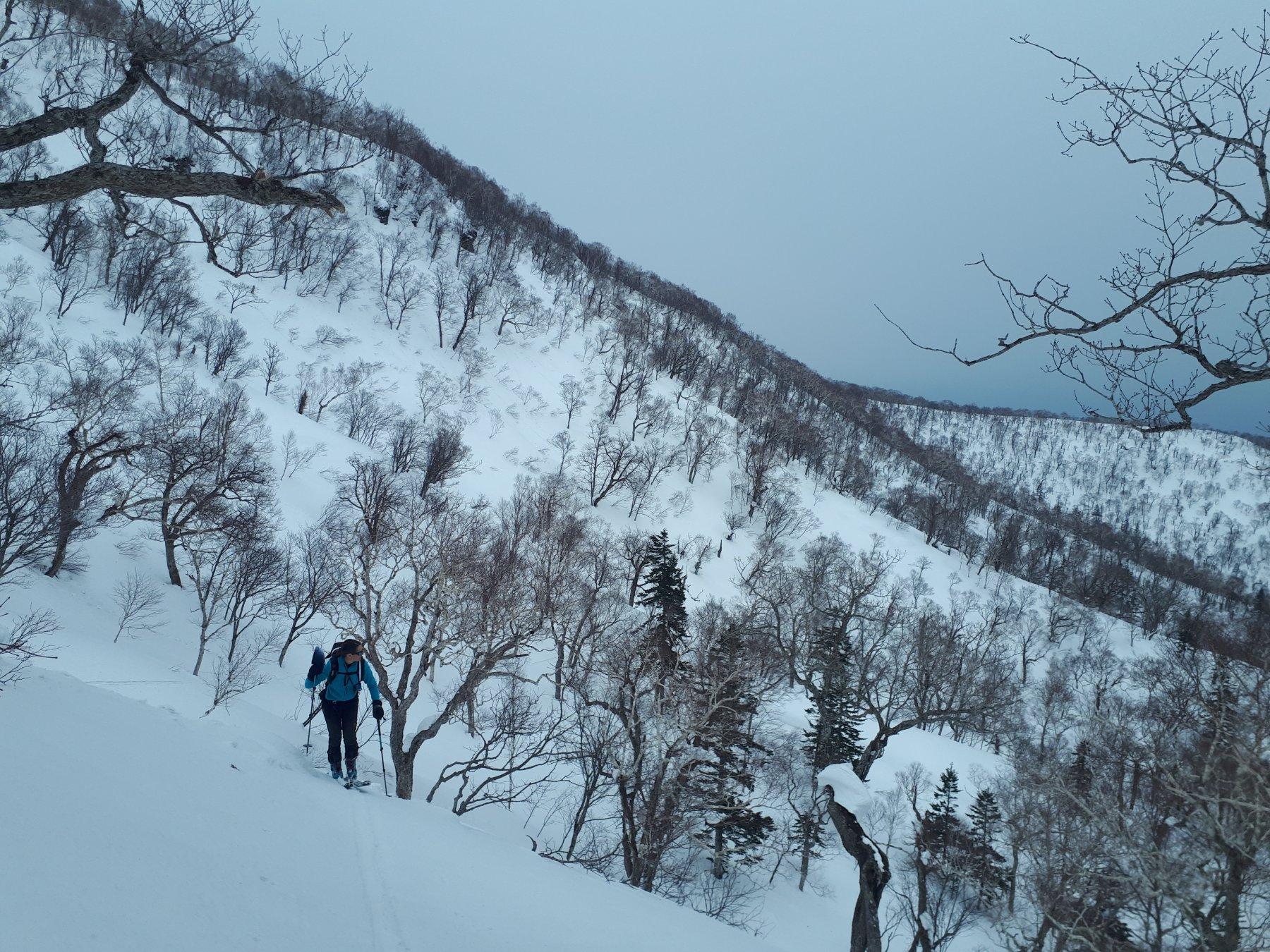 Kumbetsu West coast, Hokkaido 2019-03-11