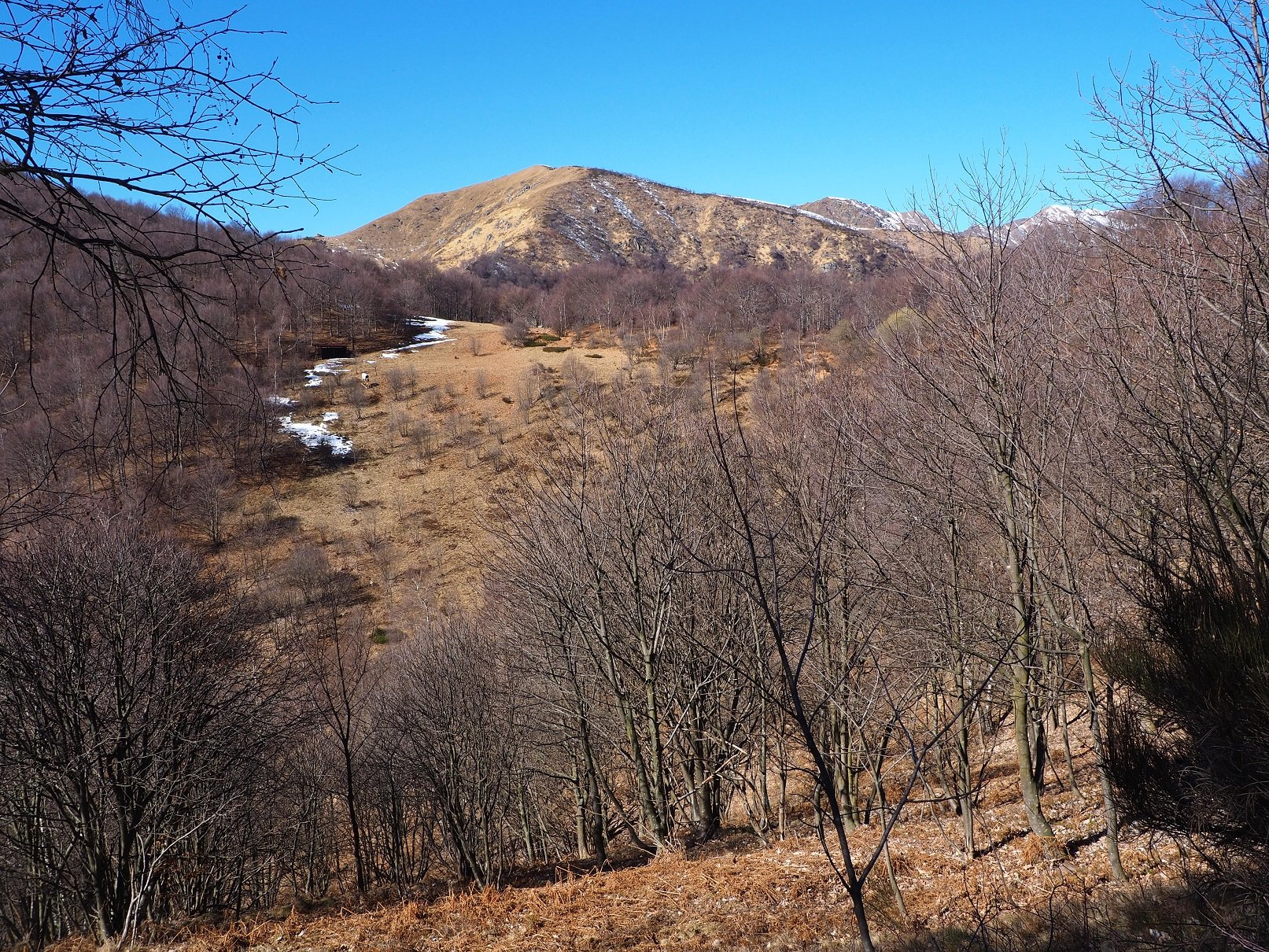 Il M.te Croce da poco oltre l'Alpe Camasca.