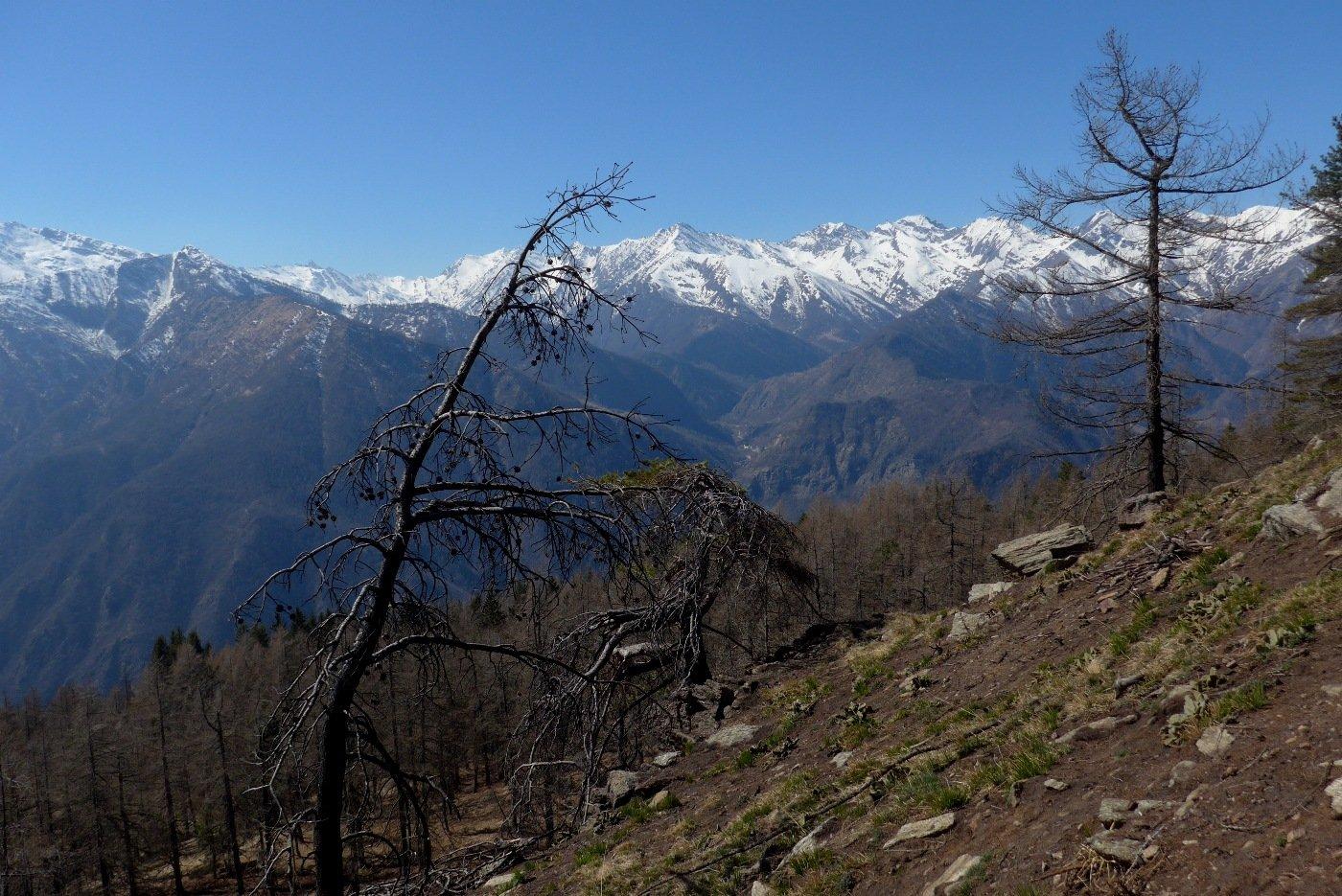 Panorama sulla Val Germanasca