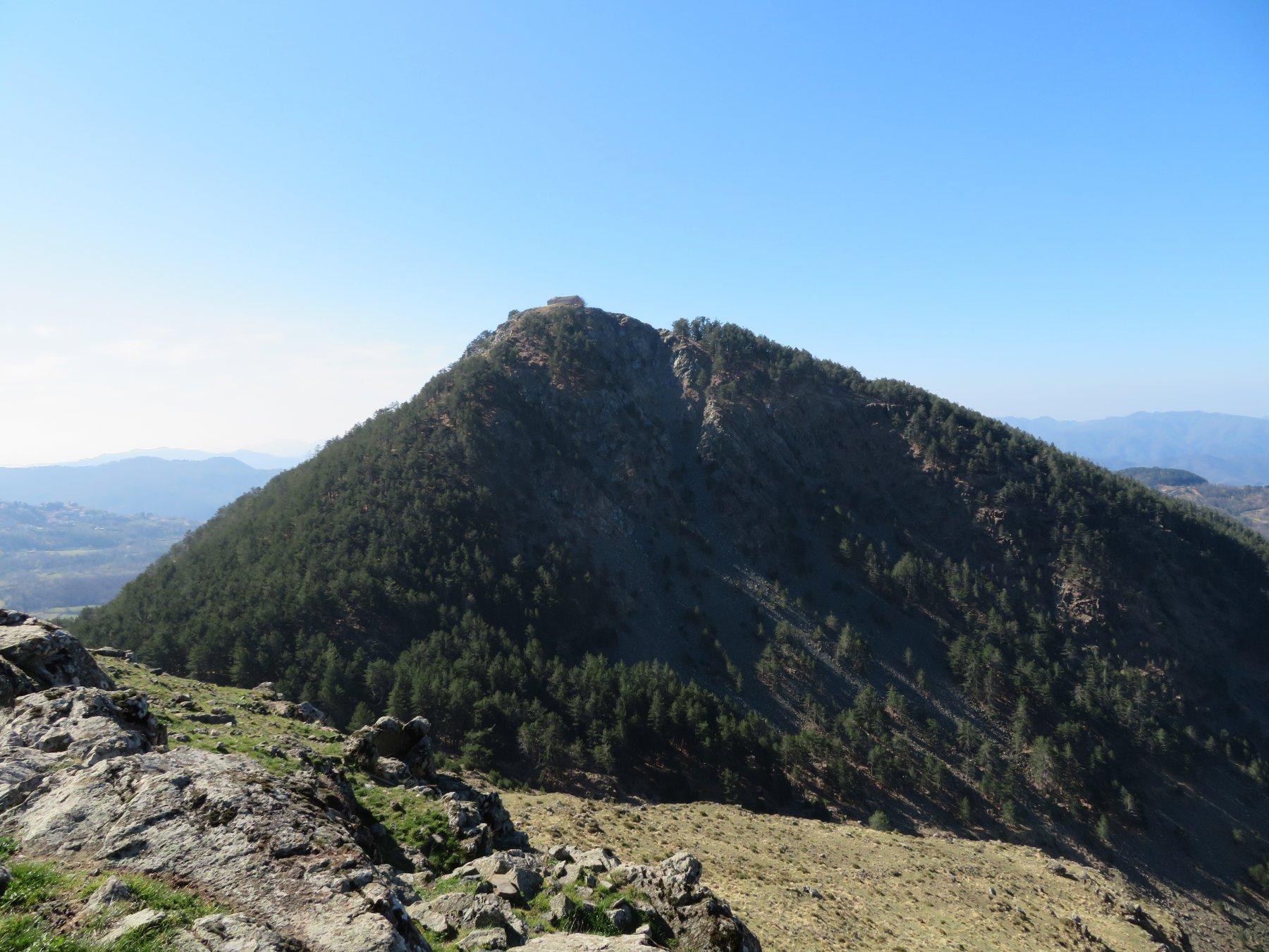Castellaro (Monte) e Monte Dragnone da Pieve di Zignago, anello 2019-03-31