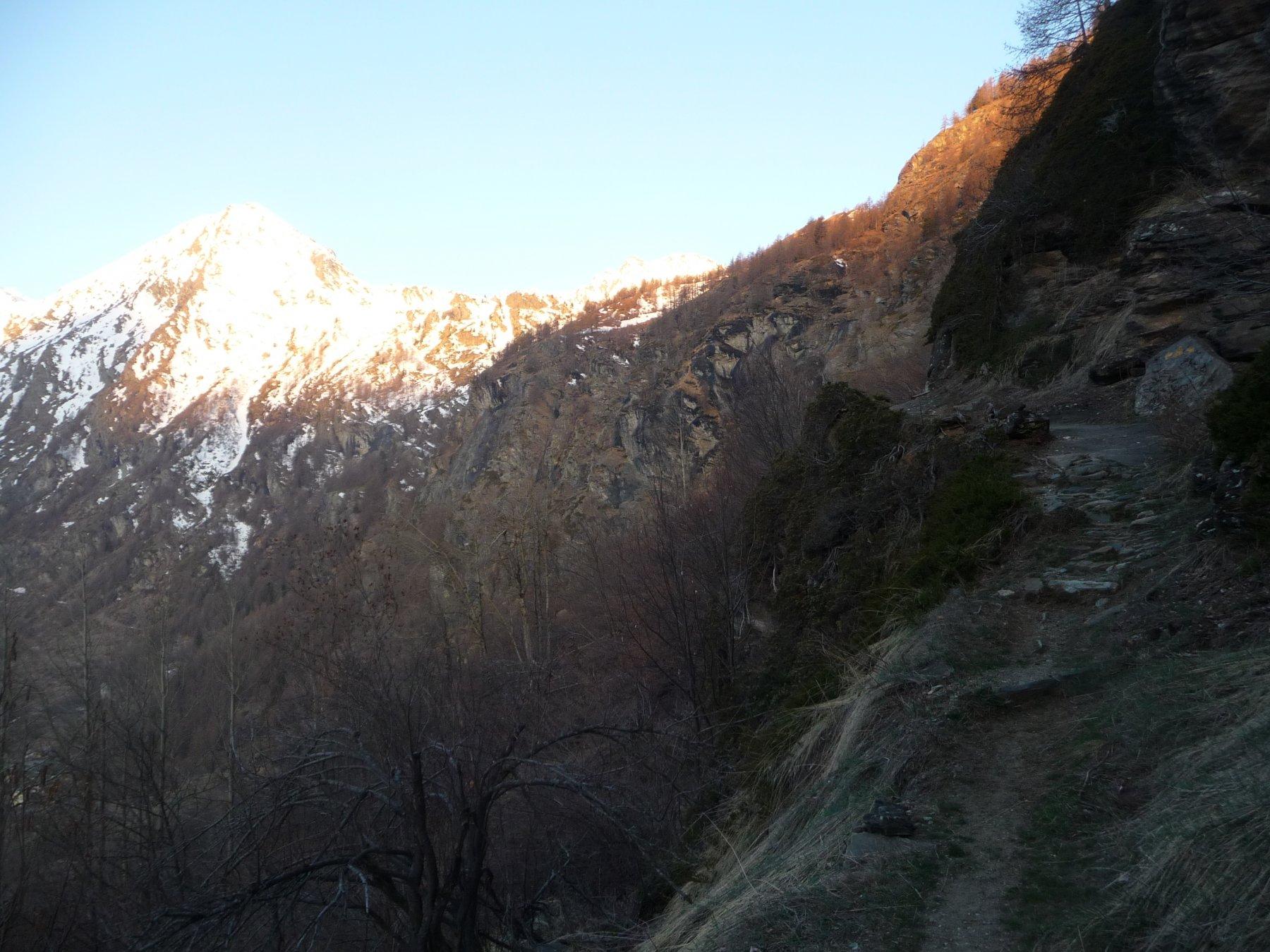 Sentiero all'alba