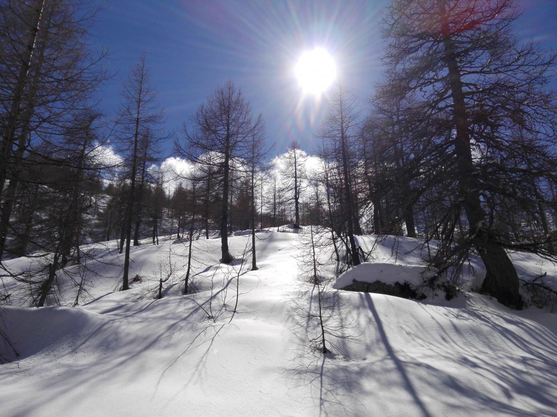 Il paesaggio è tornato invernale