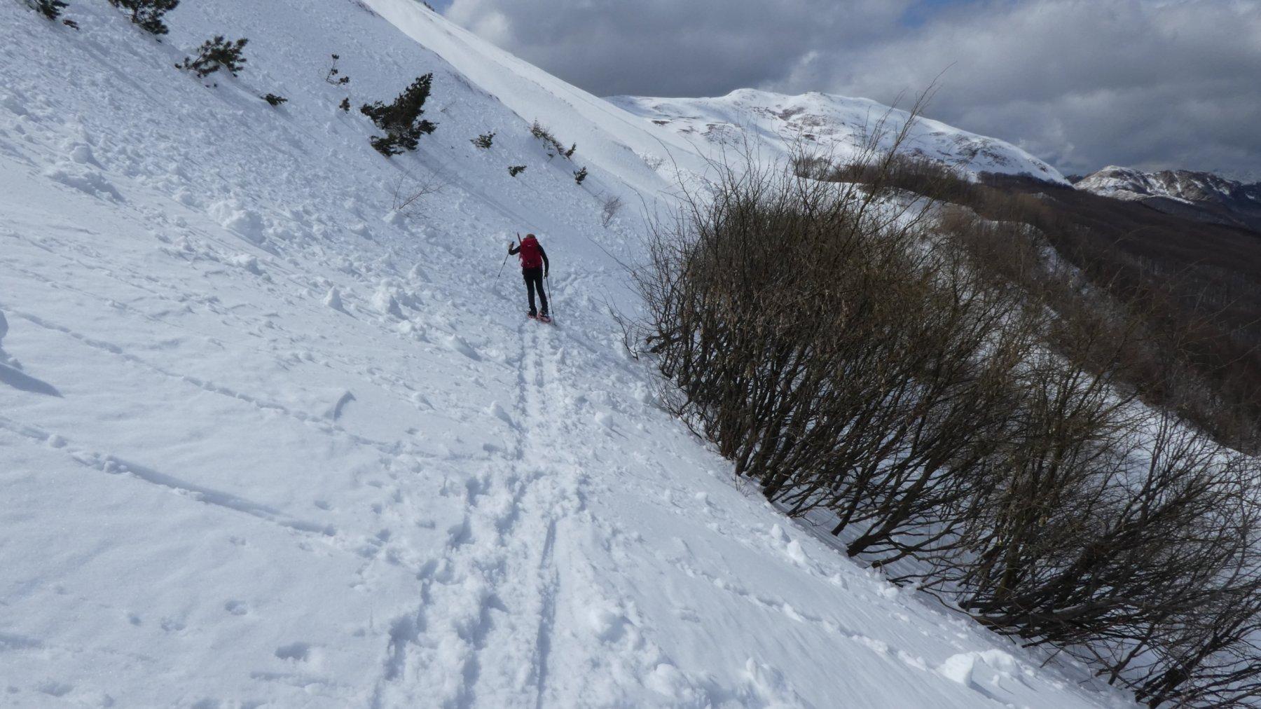 il traverso sotto il versante Nord del Monte Cipolla