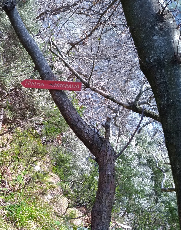 cartello alla base della via