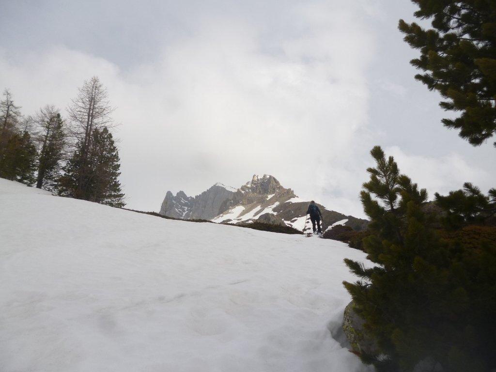 quota 2100 circa, Colonia Alpina
