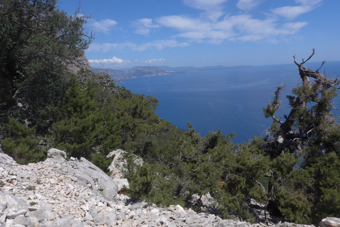 Panorama verso nord dall'ovile Piddi