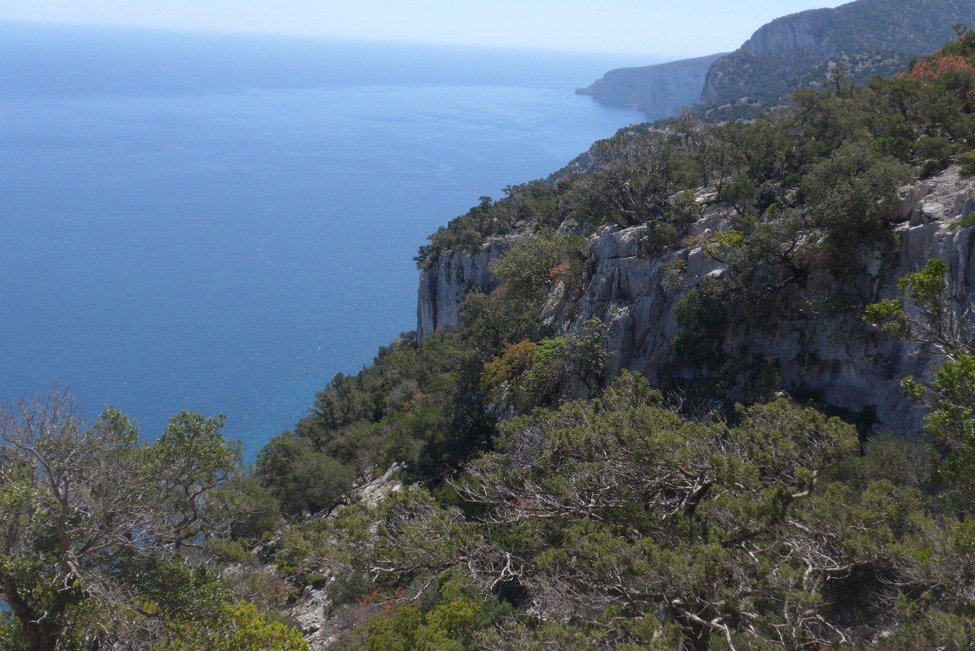 Panorama verso sud dall'ovile Piddi