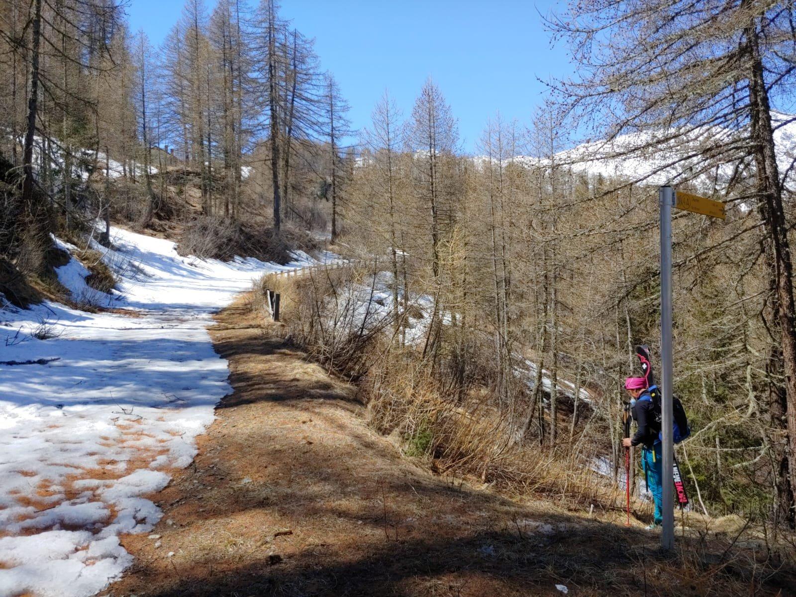 Dove inizia la neve all'uscita del sentiero