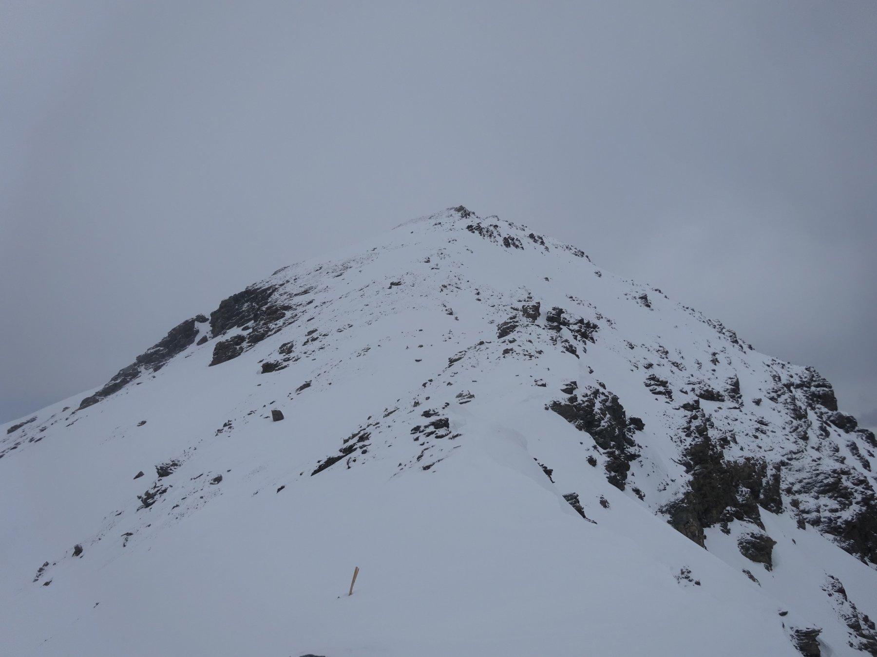 Colle del Pelvo 3065 m, con la Cima del Pelvo (cresta sud-est), per stavolta ci accontentiamo