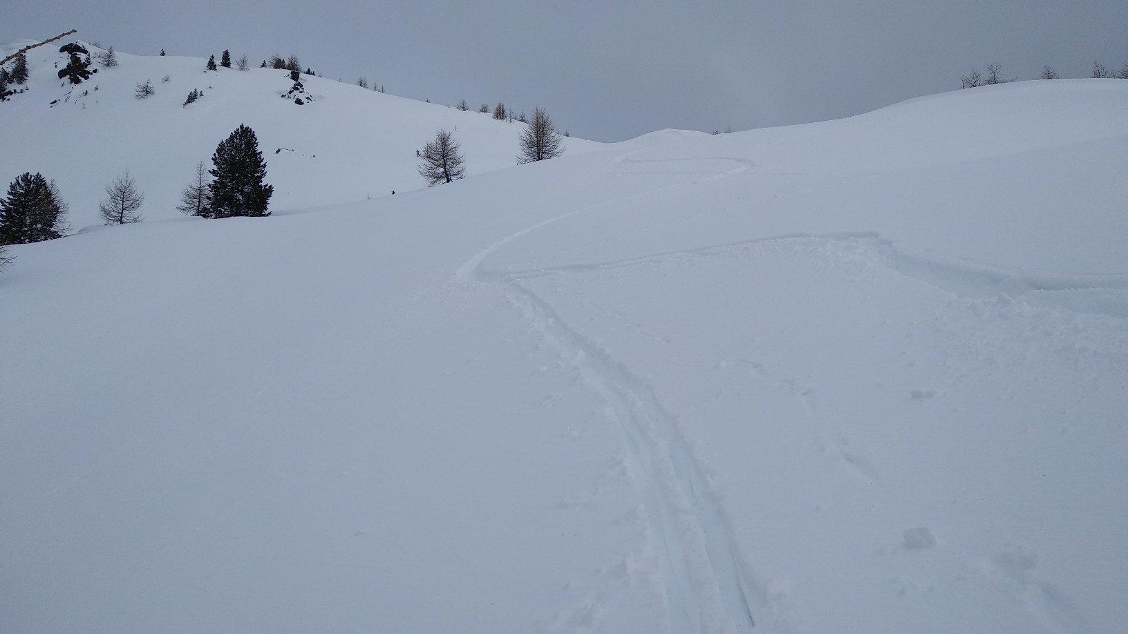 bella sciata su neve veloce e profonda