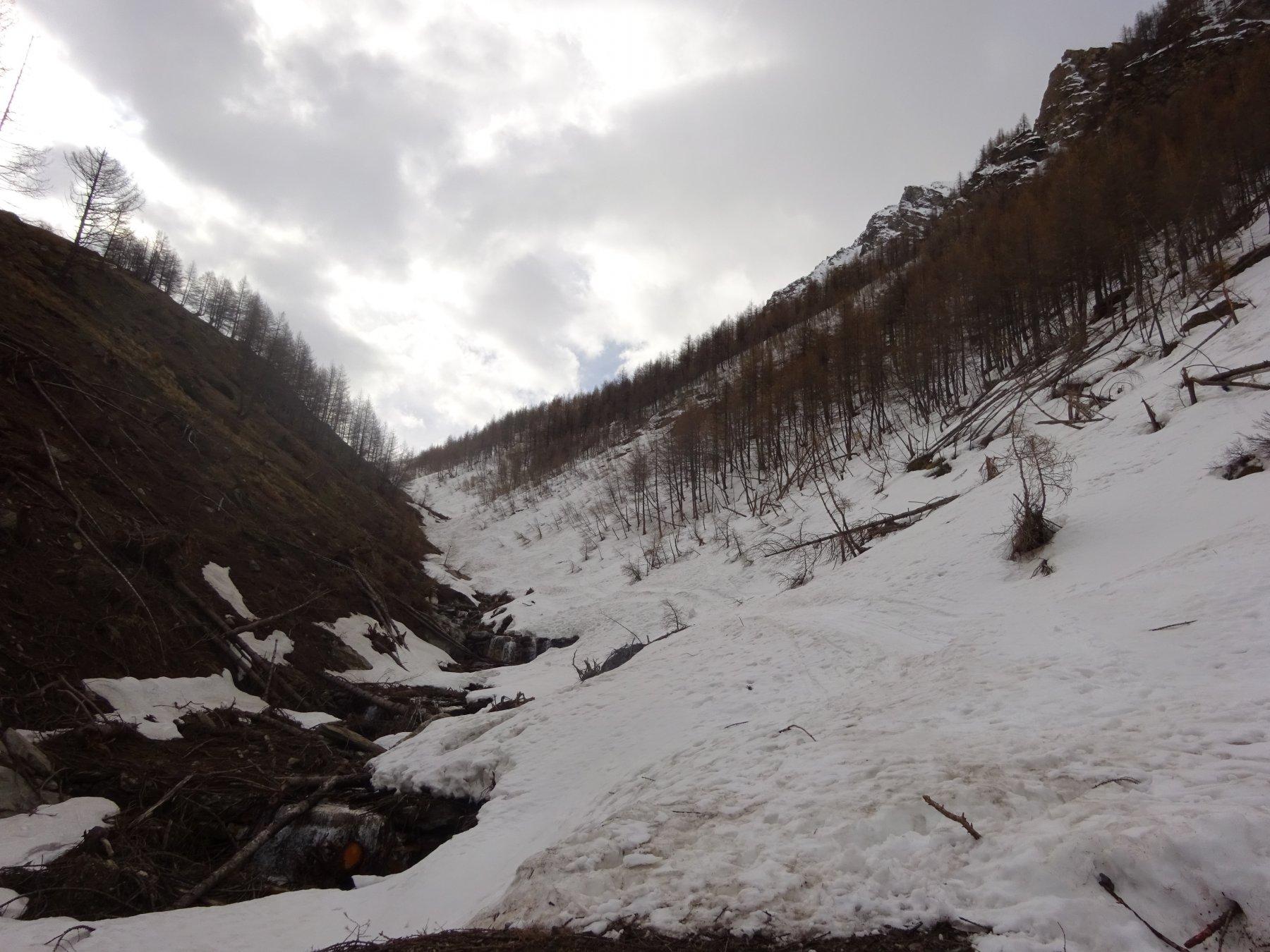 Partenza sci ai piedi dal ponte sul Rio Almiane