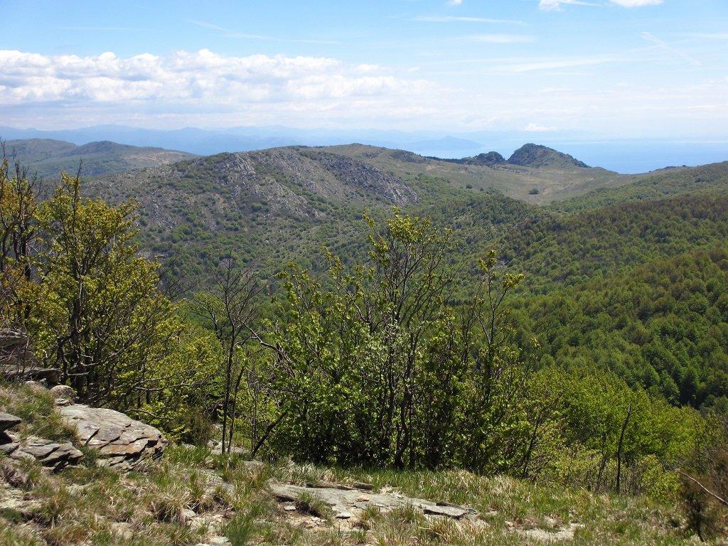 Dal monte Grosso partendo da sx, Rocca del Turnou, Resonau, Monte Rama.