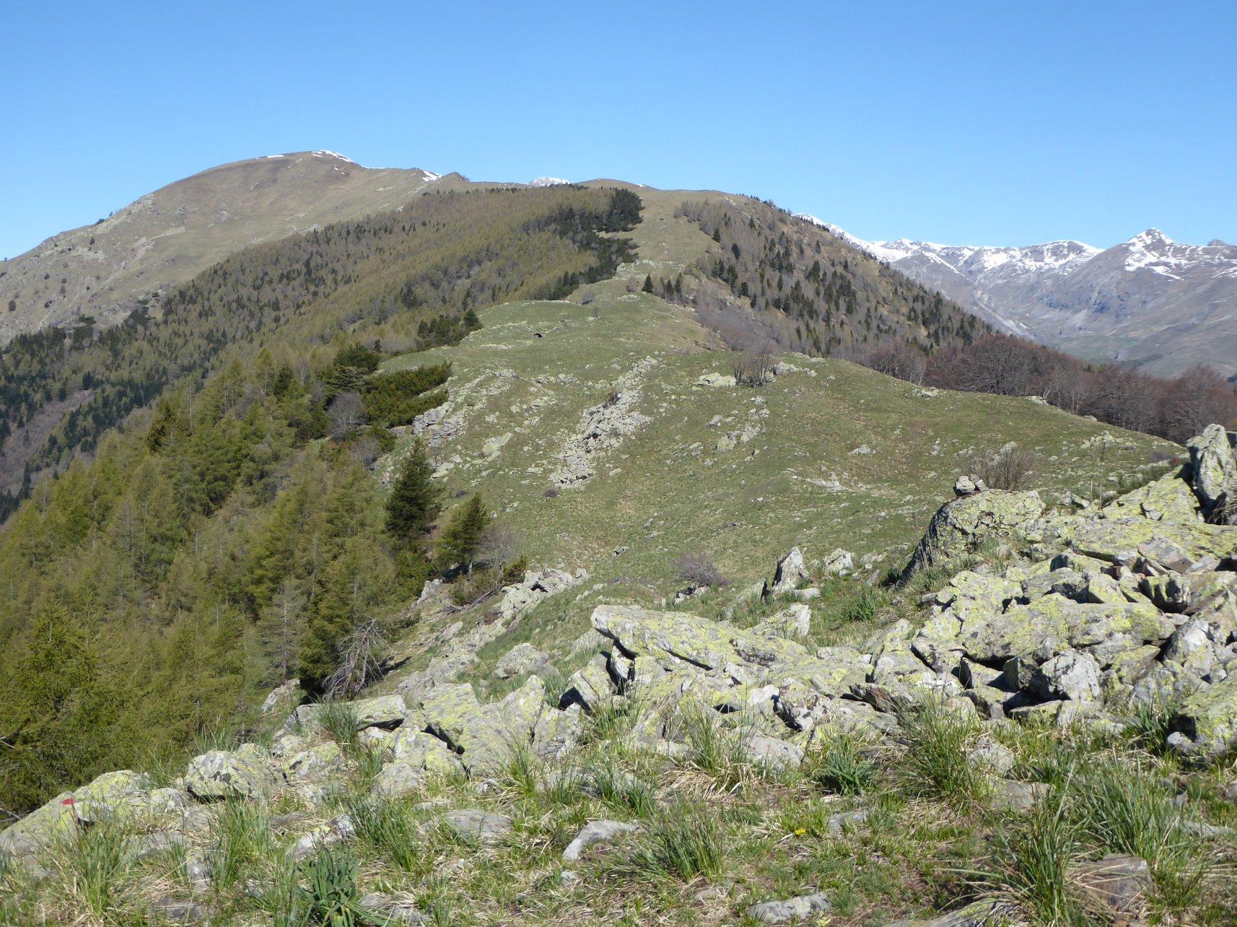 la meta, in secondo piano a sinistra, dalla Testa di Peitagù