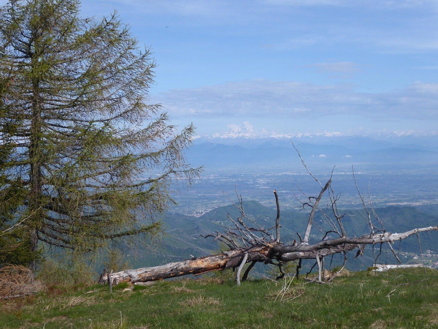 Sguardo verso la pianura dal M.te Moro. Sullo sfondo, tra le nubi, il Monviso.