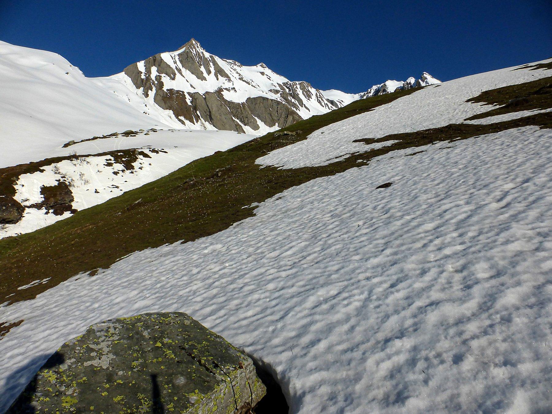prime lingue di neve sotto Farcoz