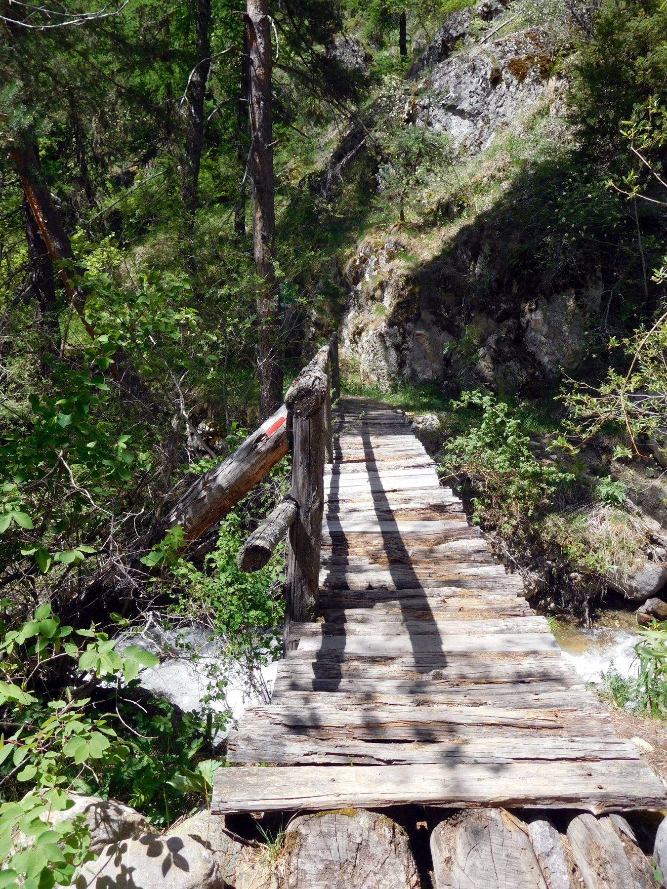 primo ponte sul Sachas