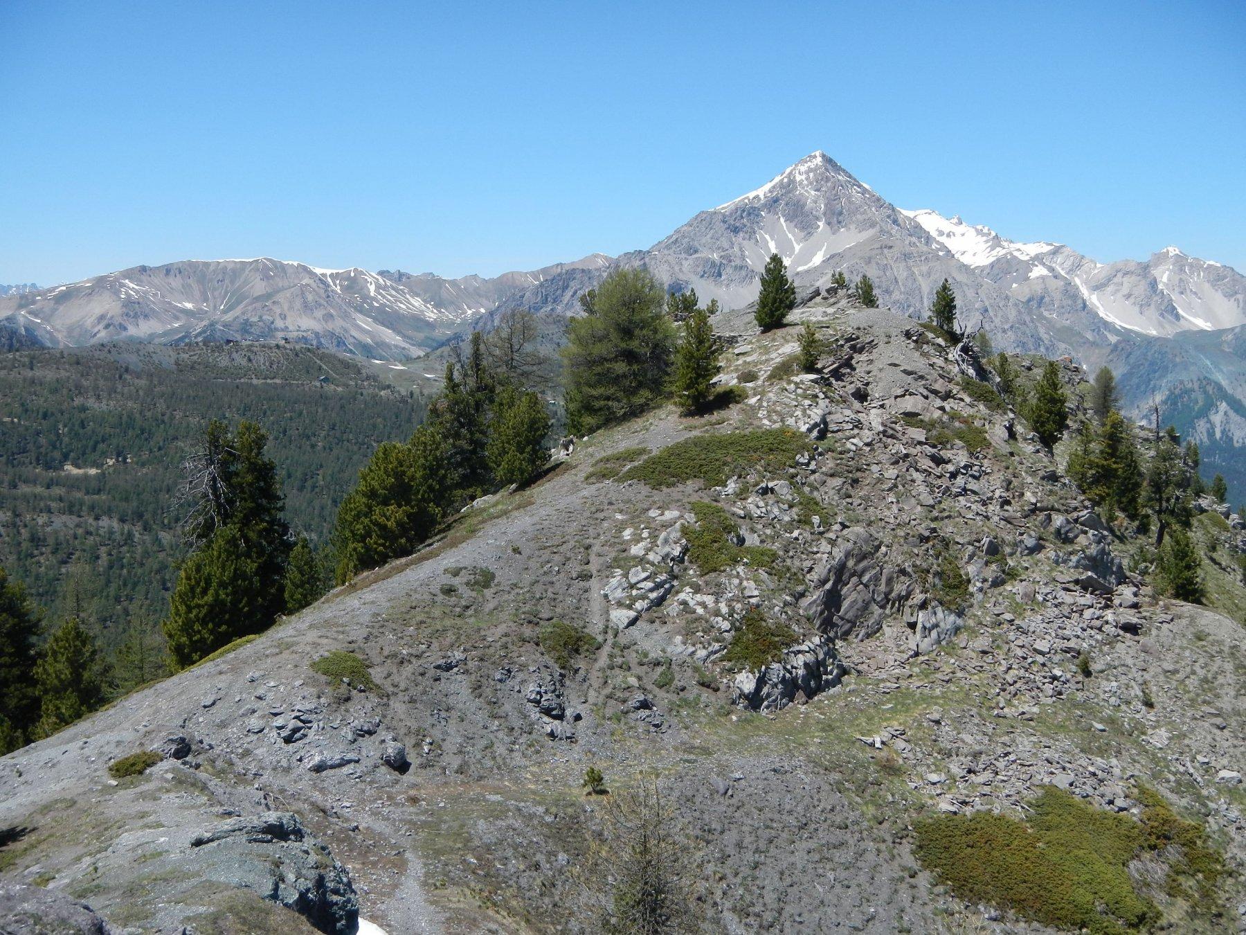 Corbioun (Monte) da Bousson 2019-06-08
