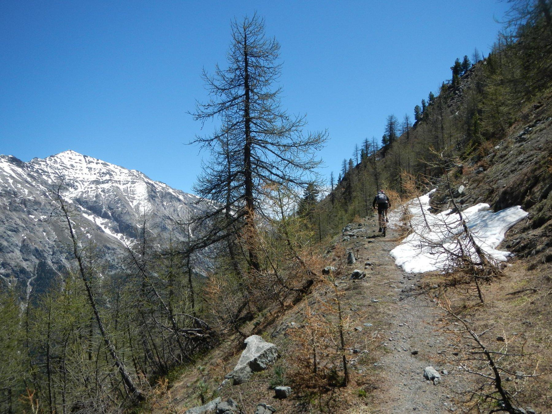 il tratto di salita su sentiero