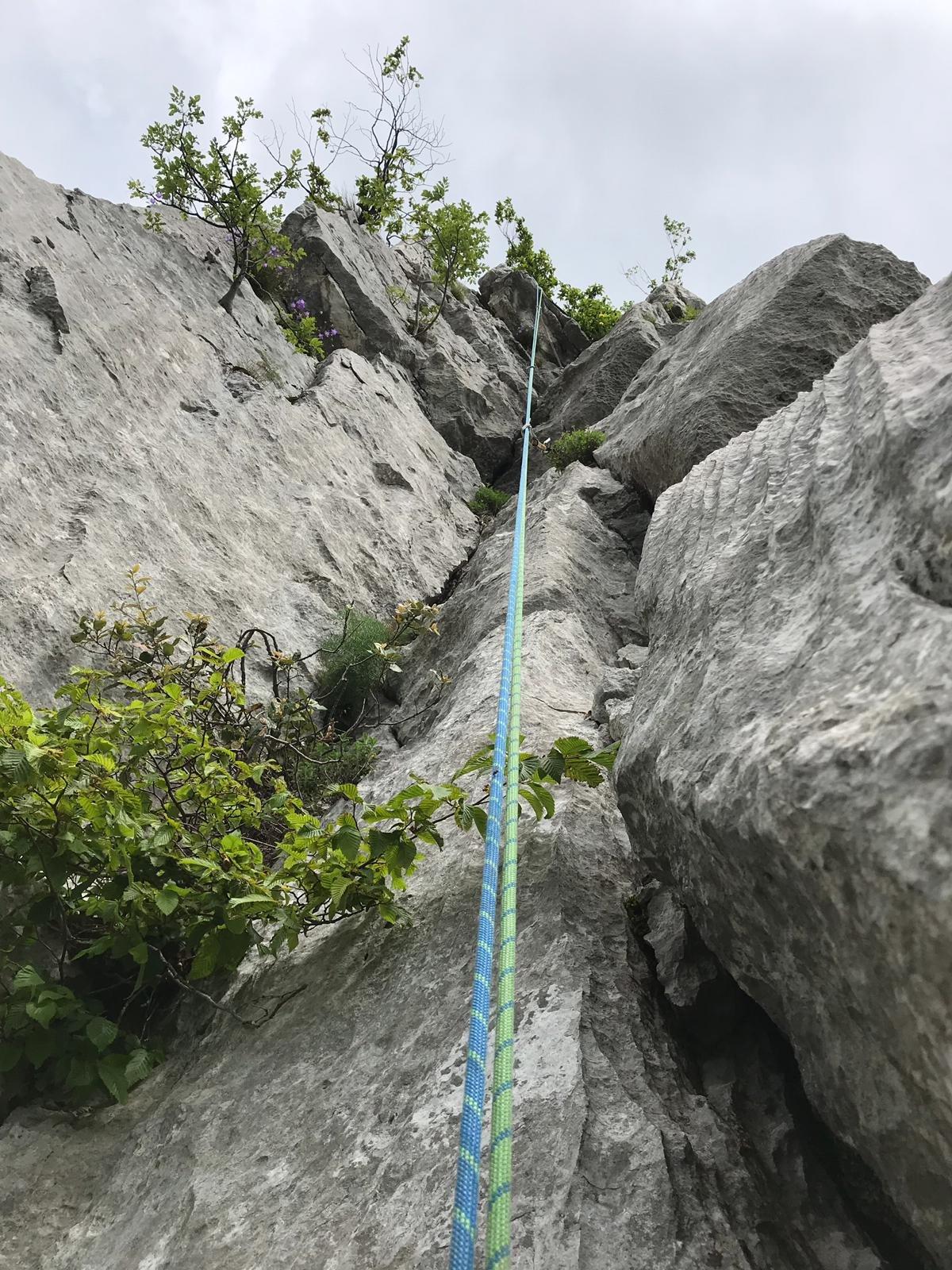 Castello Gaino (Monte) Via del Gheppio 2019-06-09
