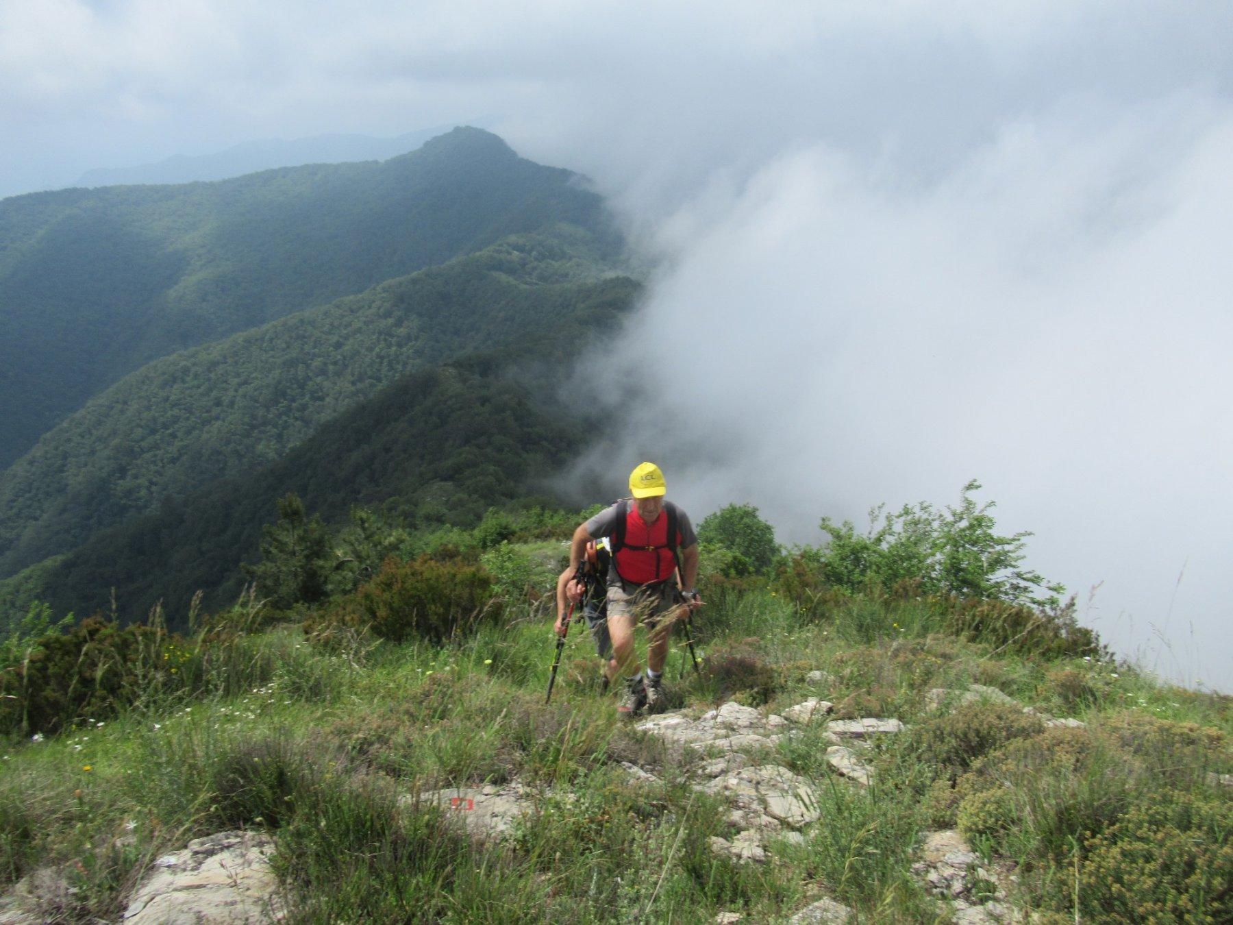 sembra essere nella cresta tra il Biellese e la Valle d'Aosta per la nebbia ...