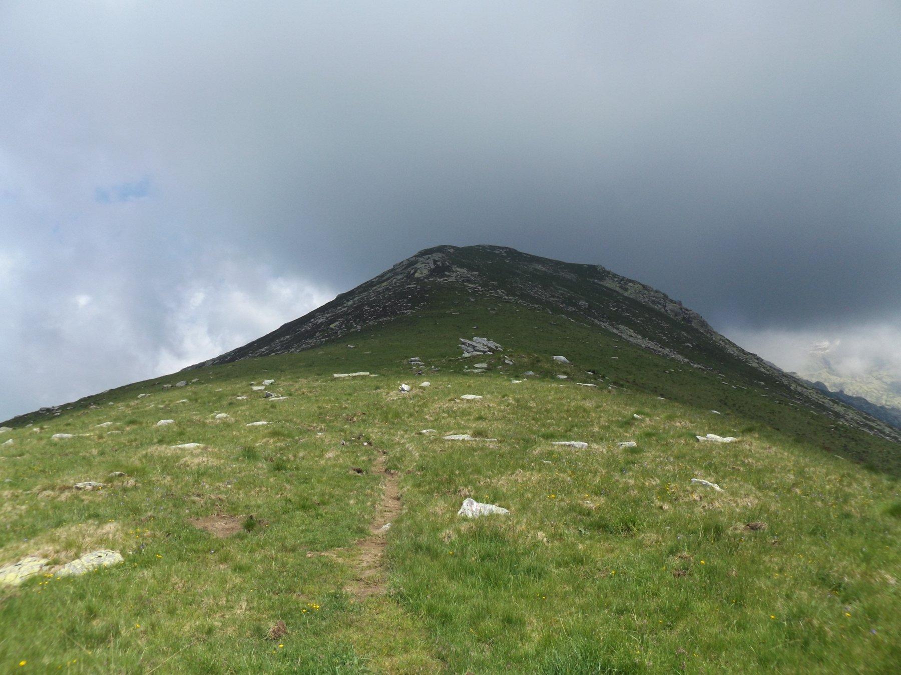 Monte Arzola dal colletto