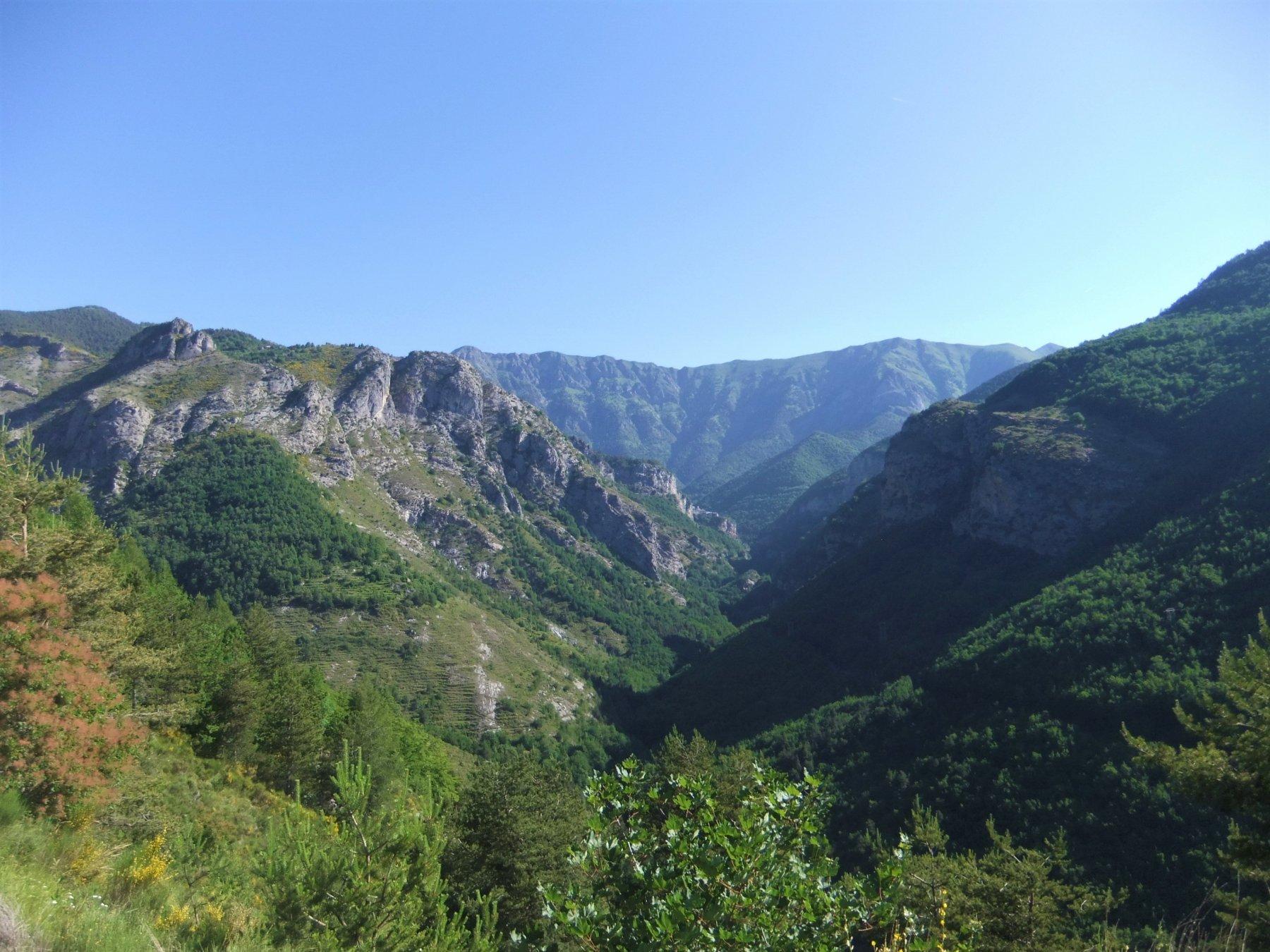 Il vallone di Realdo con il Saccarello sullo sfondo