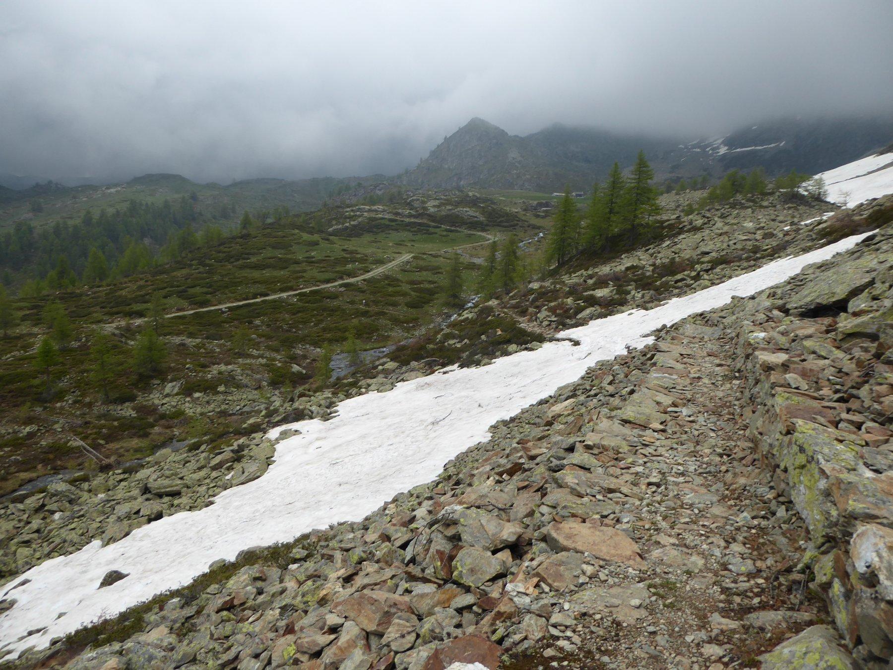 gli unici 10 metri di nevaio prima di scendere alla già visibile sterrata