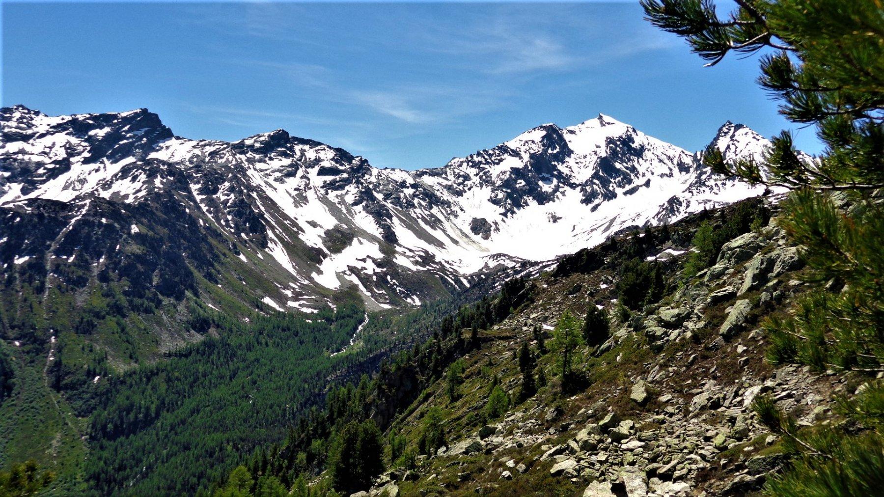 Panorama verso Mont Paramont e Colle Crosattie dal Colletto