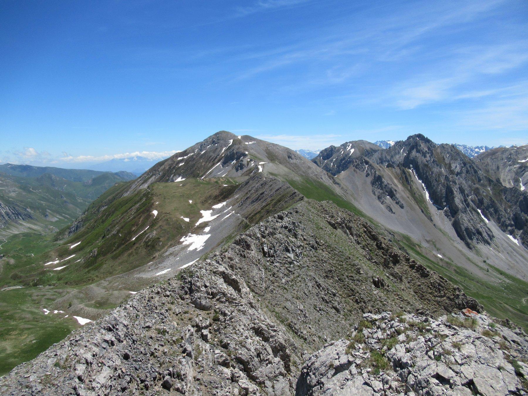 Il Monte Omo dal Ruissas