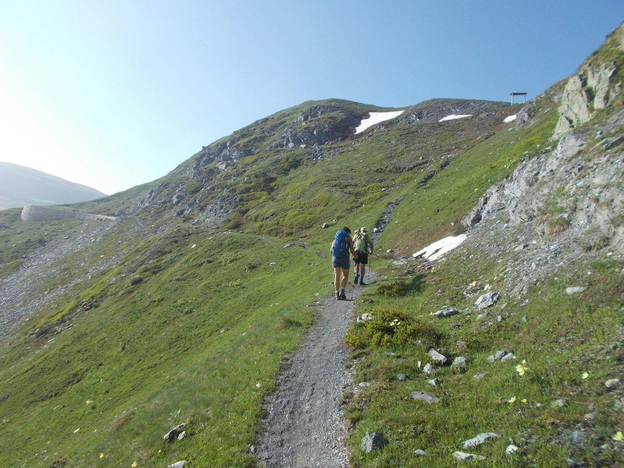 il bel sentiero che sale al Colle del Mulo