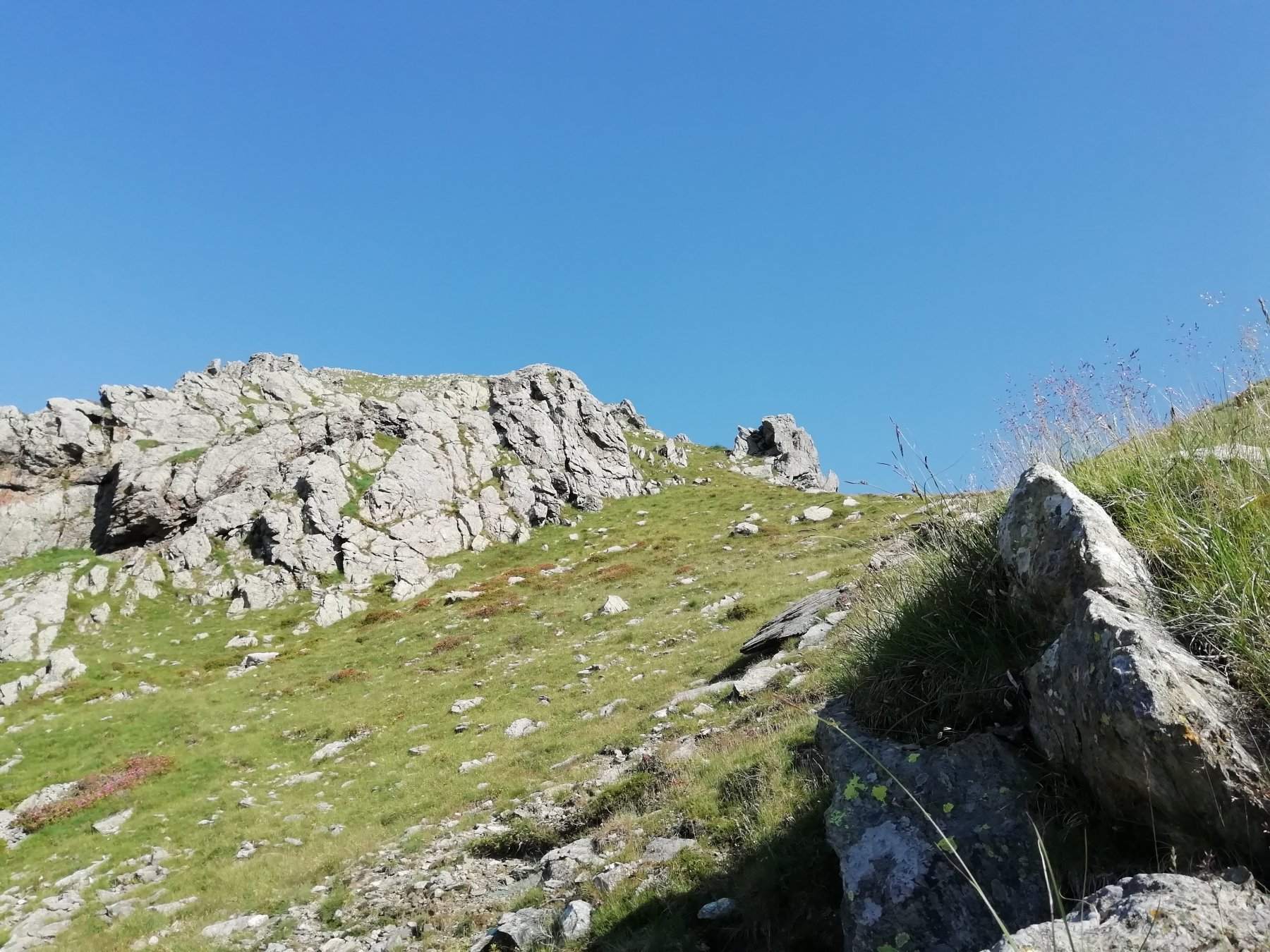 versante verso il colle e sentiero per Punta della Croce