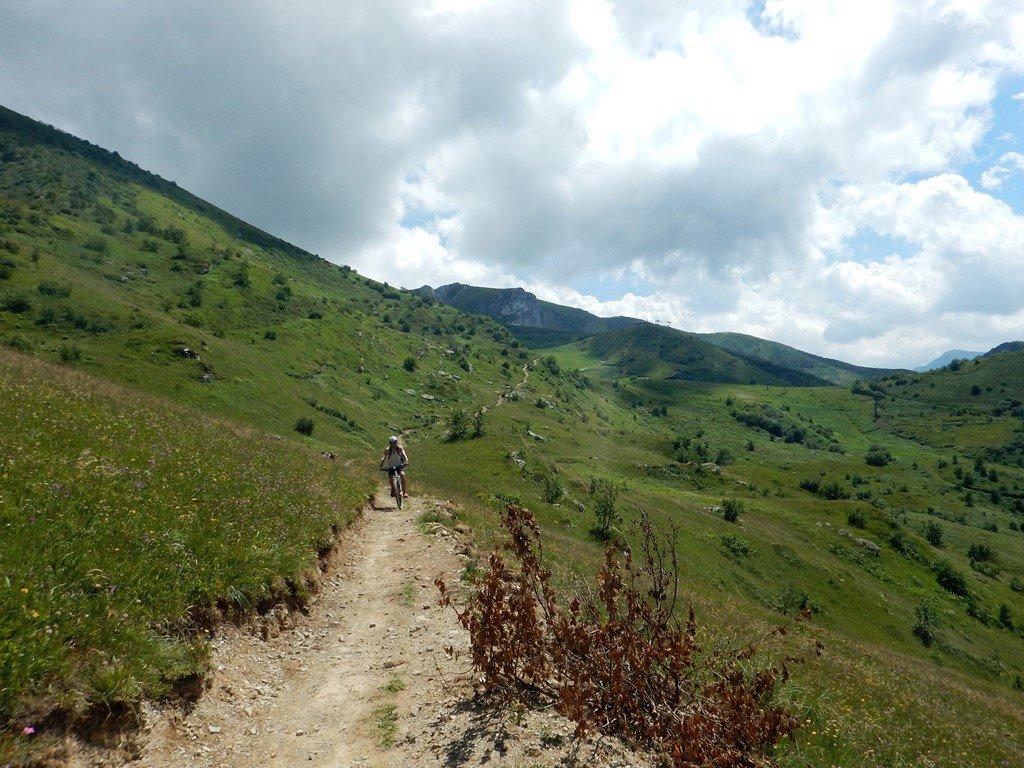 Il bel sentiero tra Niculin e Terrasole