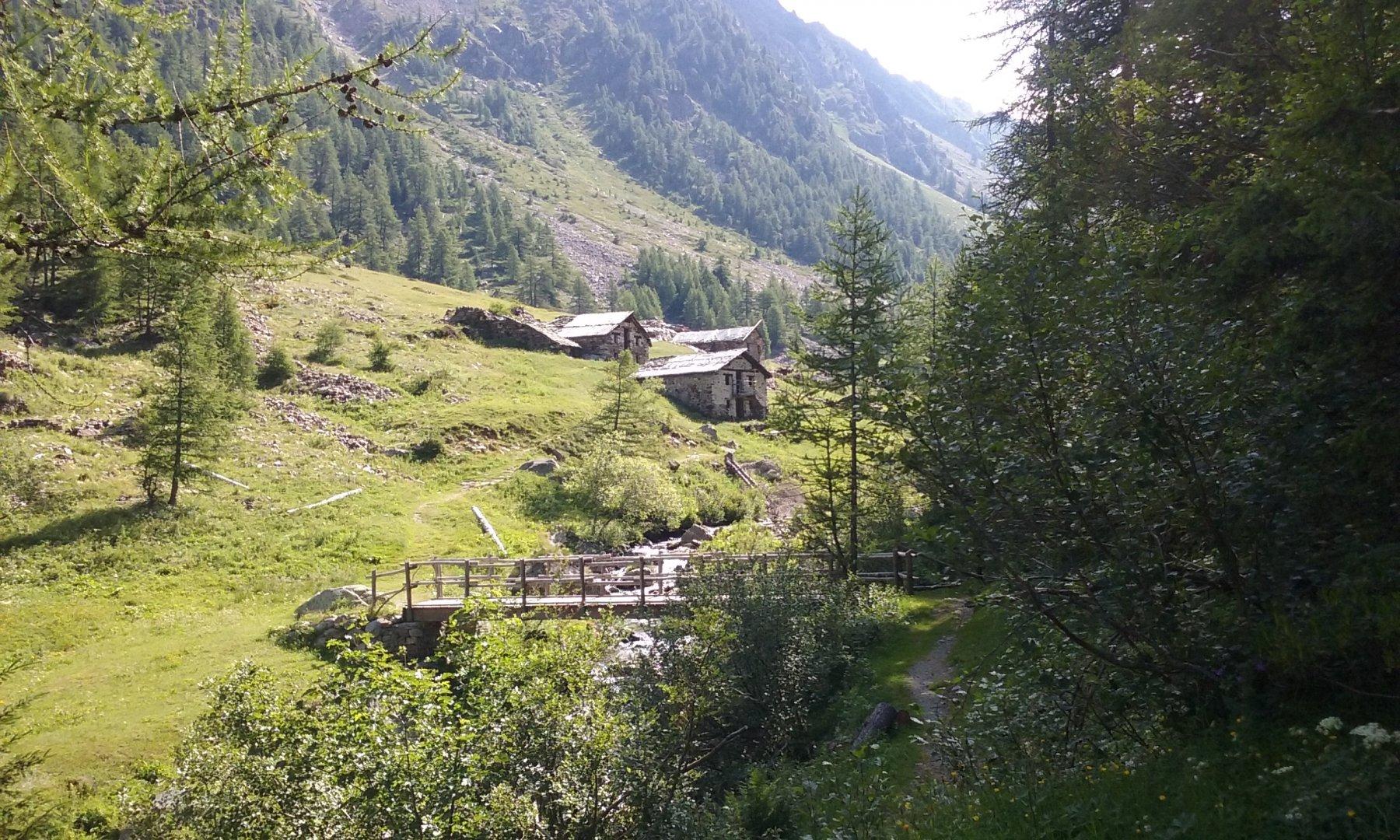 Alpeggi nel Vallone di Loo