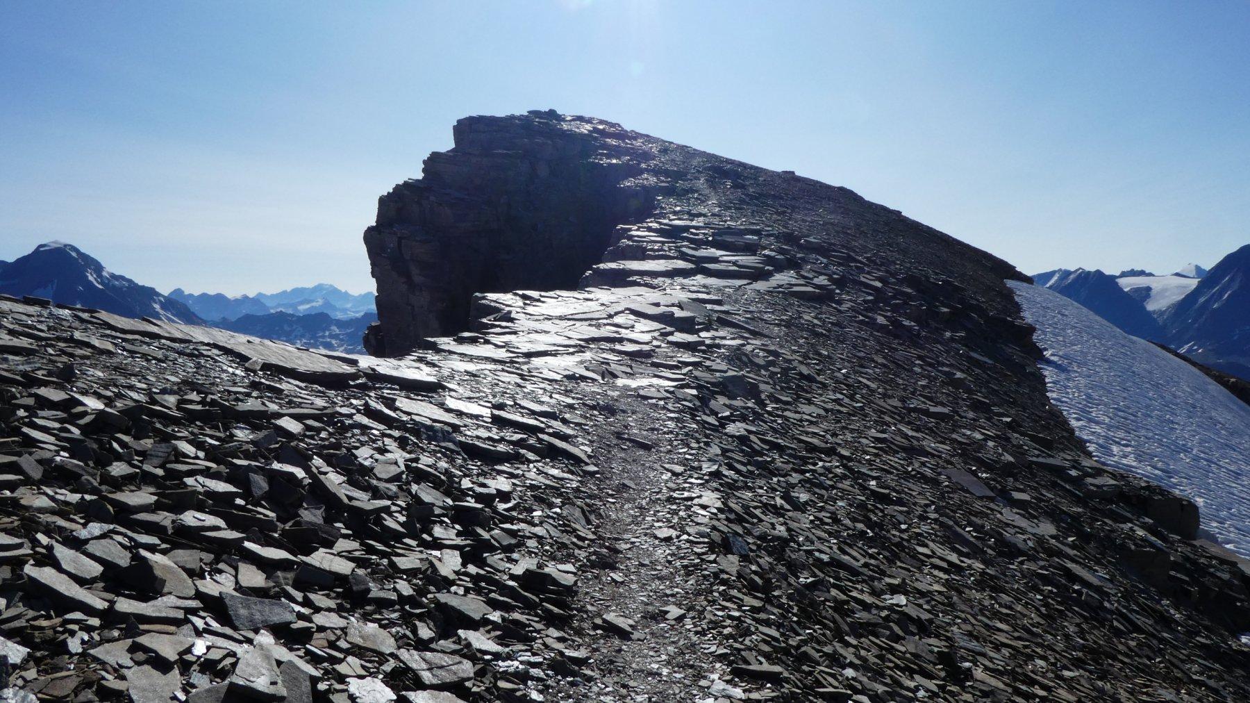ultimi metri di facile cresta per arrivare in cima alla Rechasse